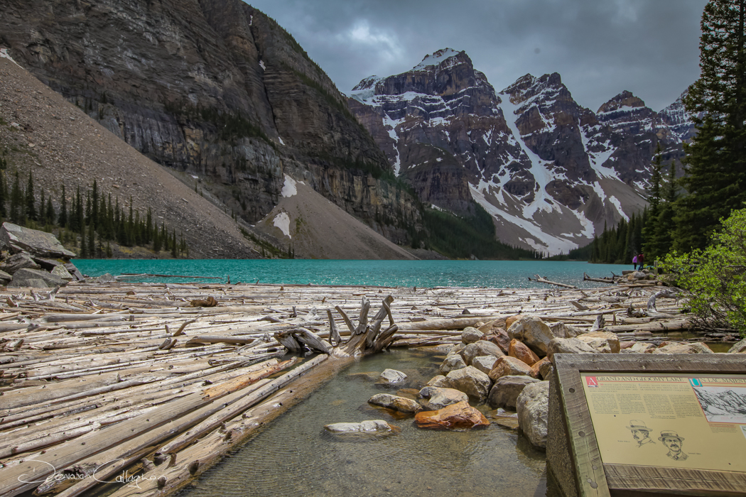 Moraine Lake log jam, Canada