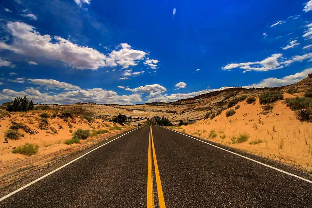 The Journey, USA