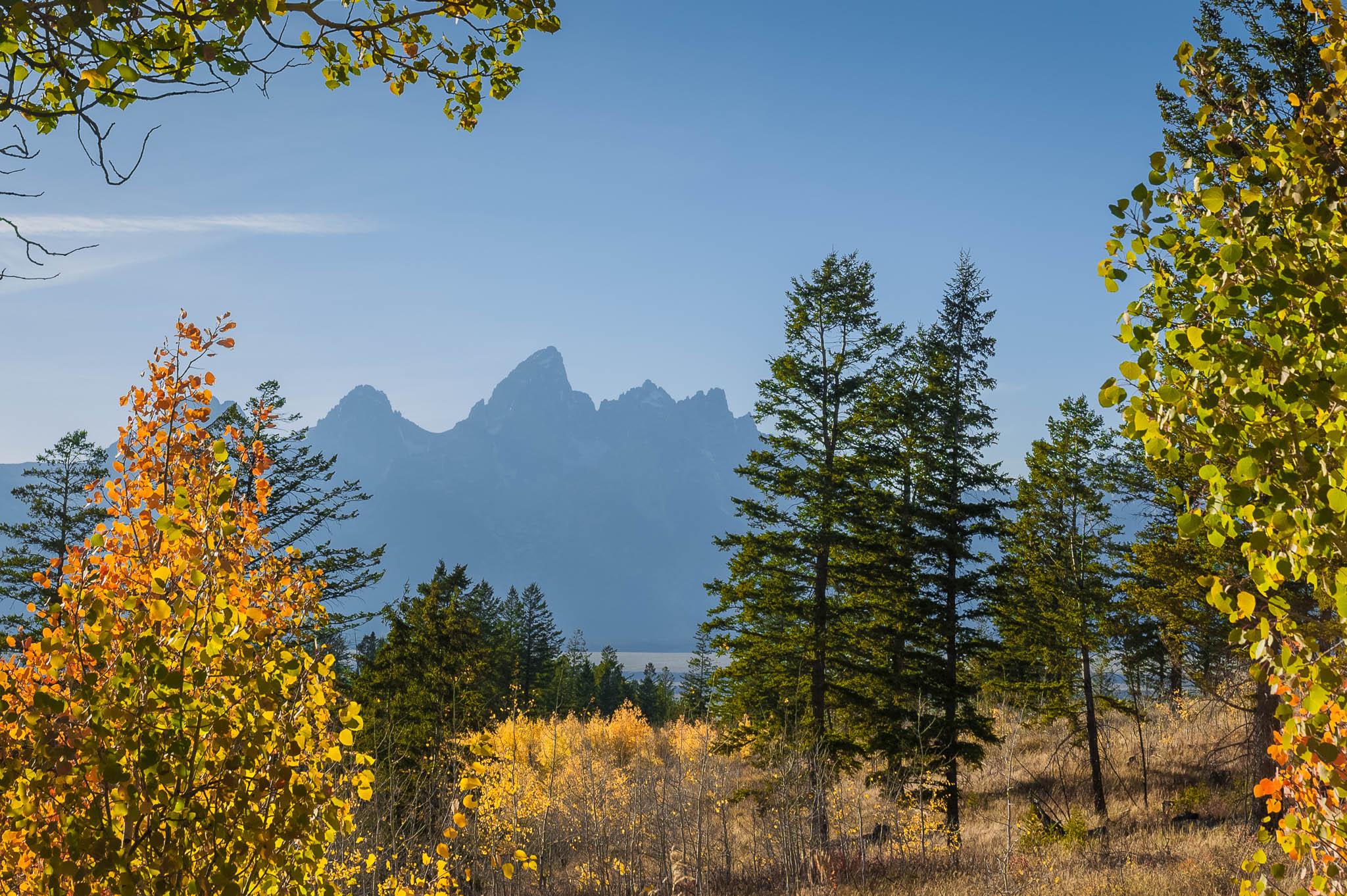 Grand Teton from Shadow Mountain Road, USA