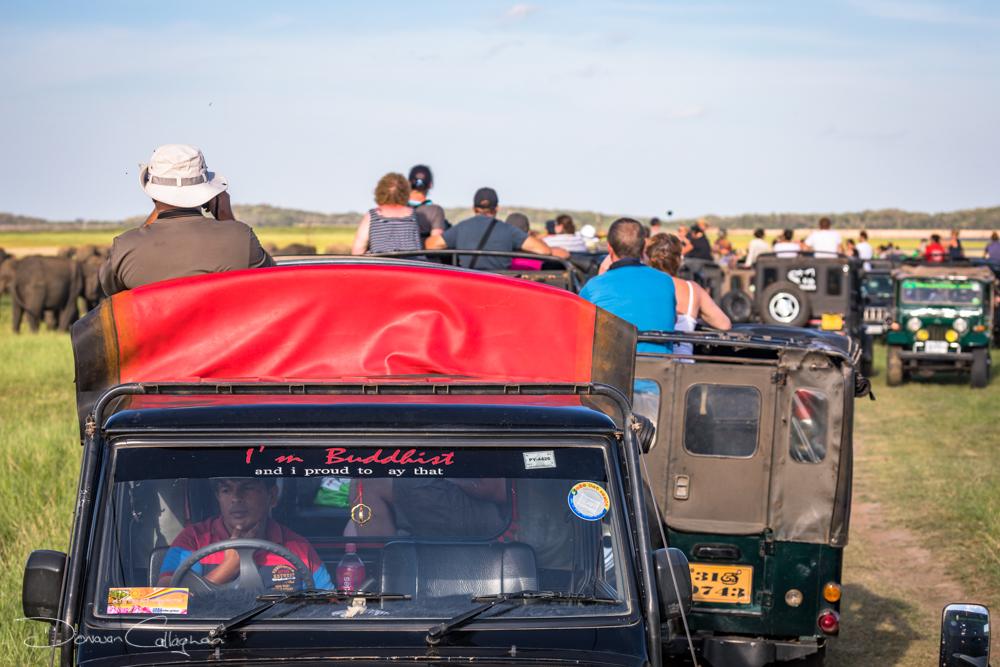 More Jeeps than Elephants Sri lanka, Sri Lanka
