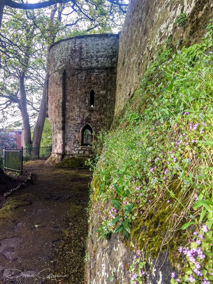 Rougemont Castle or Exeter Castle wall UK, United Kingdom