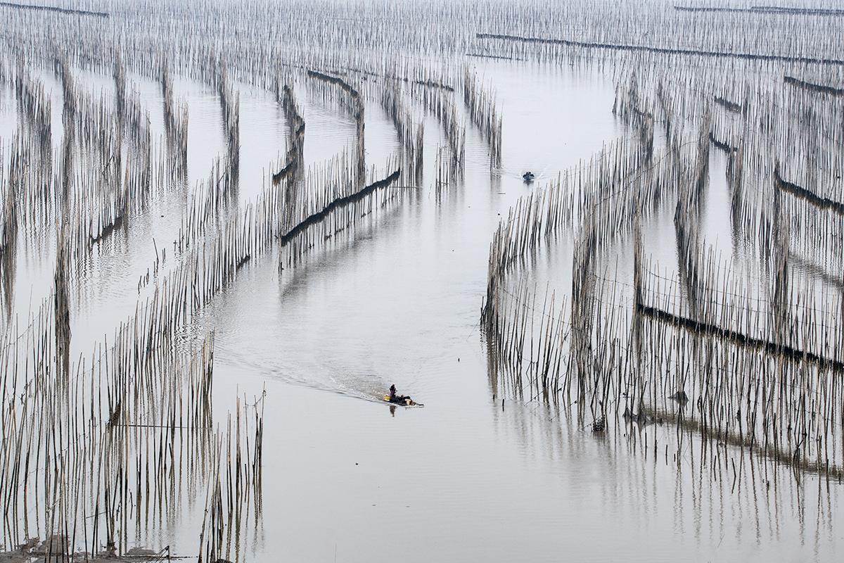 Shajiang, Xiapu, China