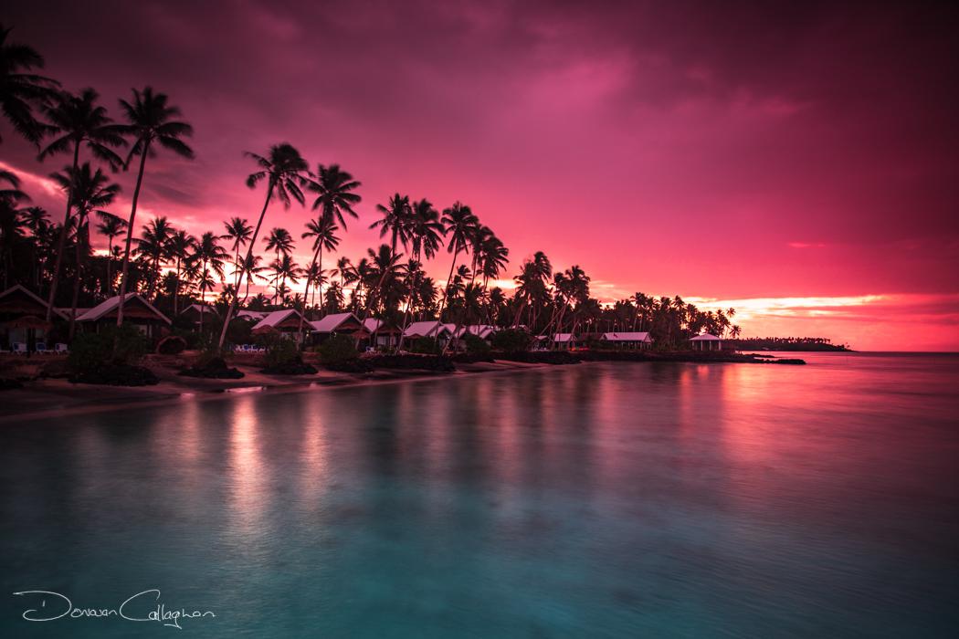 Sunrise coconut palms Samoa, Samoa