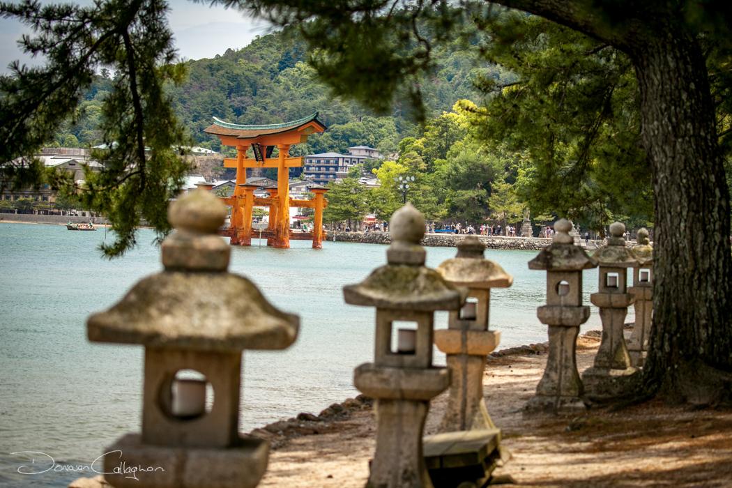 The Torii gate  Miyajima, Japan