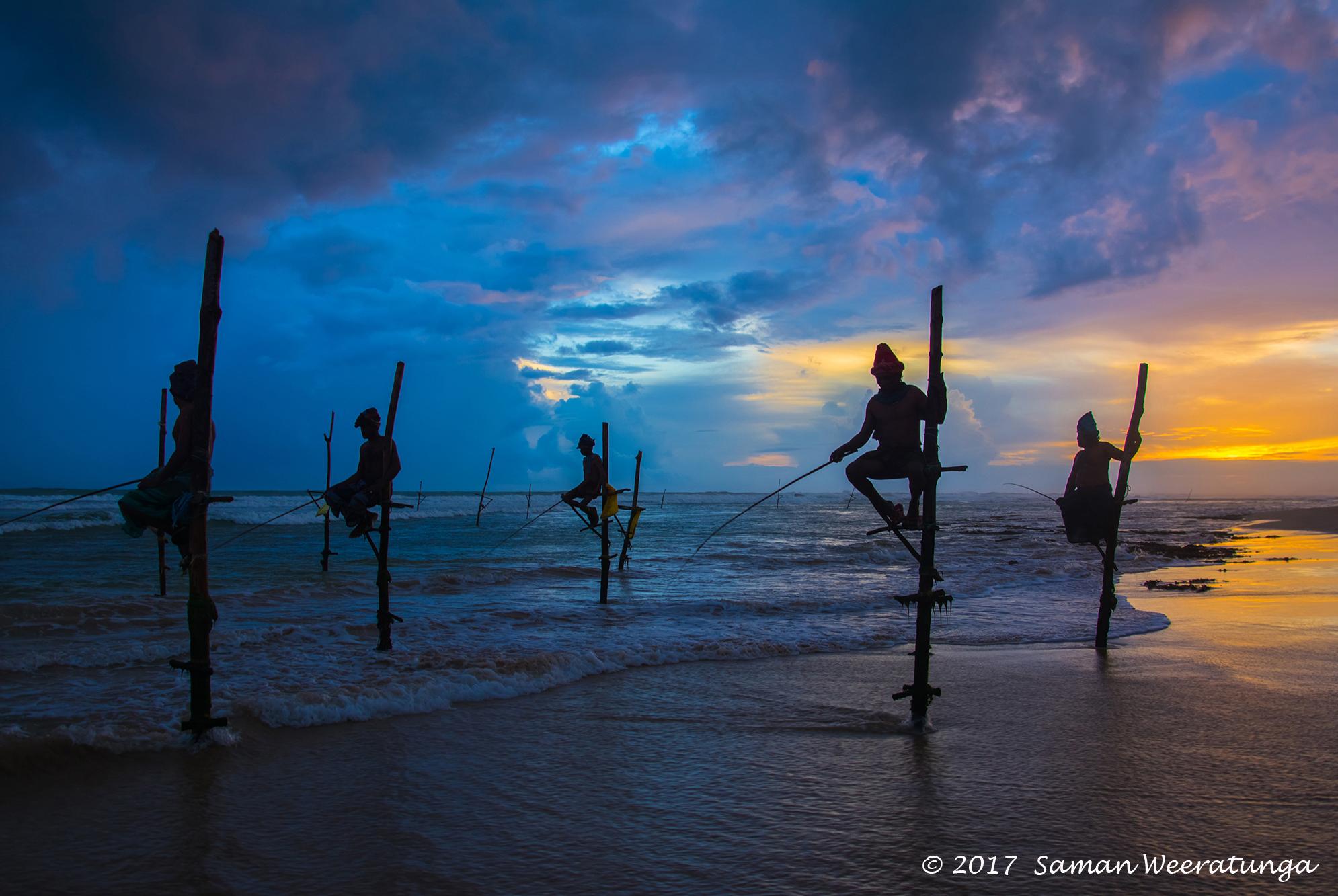 Traditional Sri Lankan Stilt Fishermen, Sri Lanka