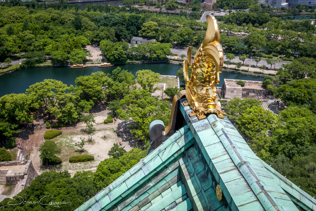 View from the top of Osaka Castle, Japan