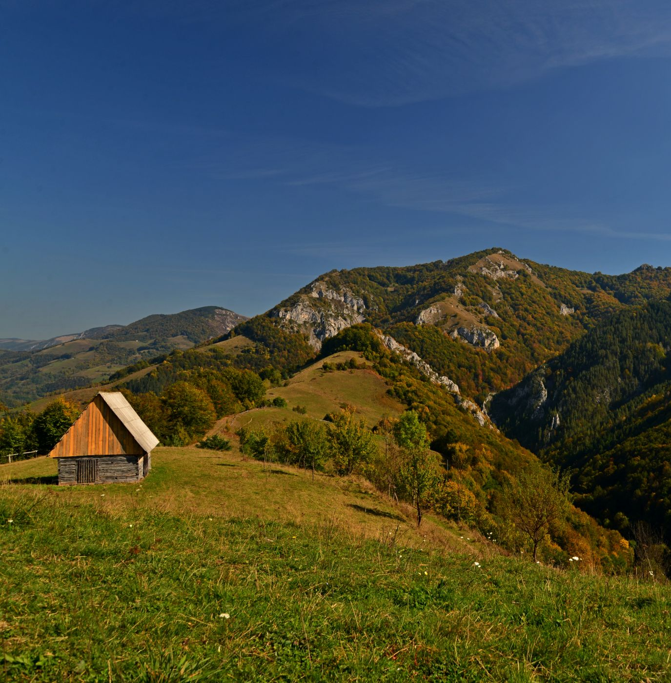 Coltii Caprei, Romania