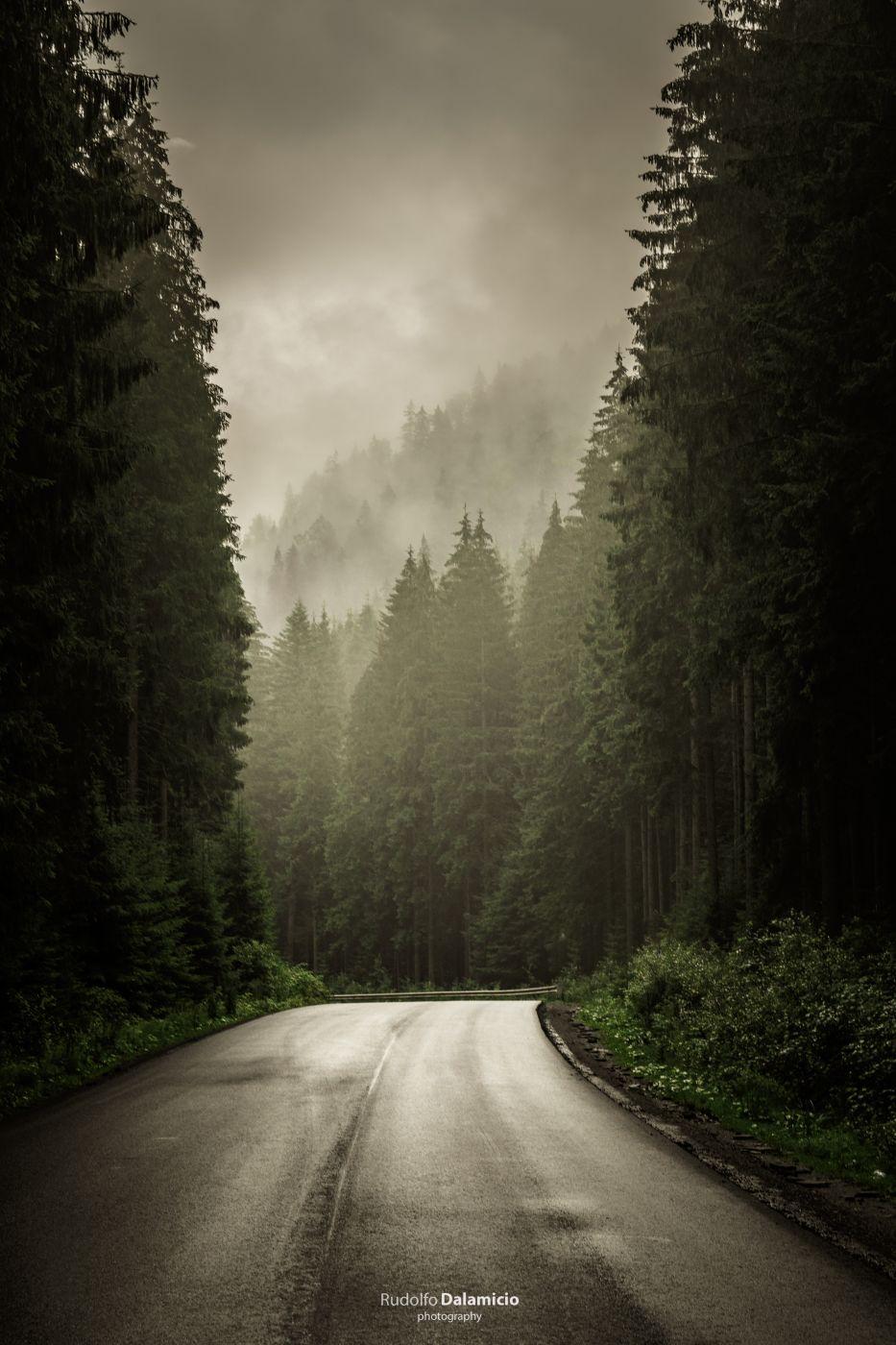 Dark Mist, Ukraine