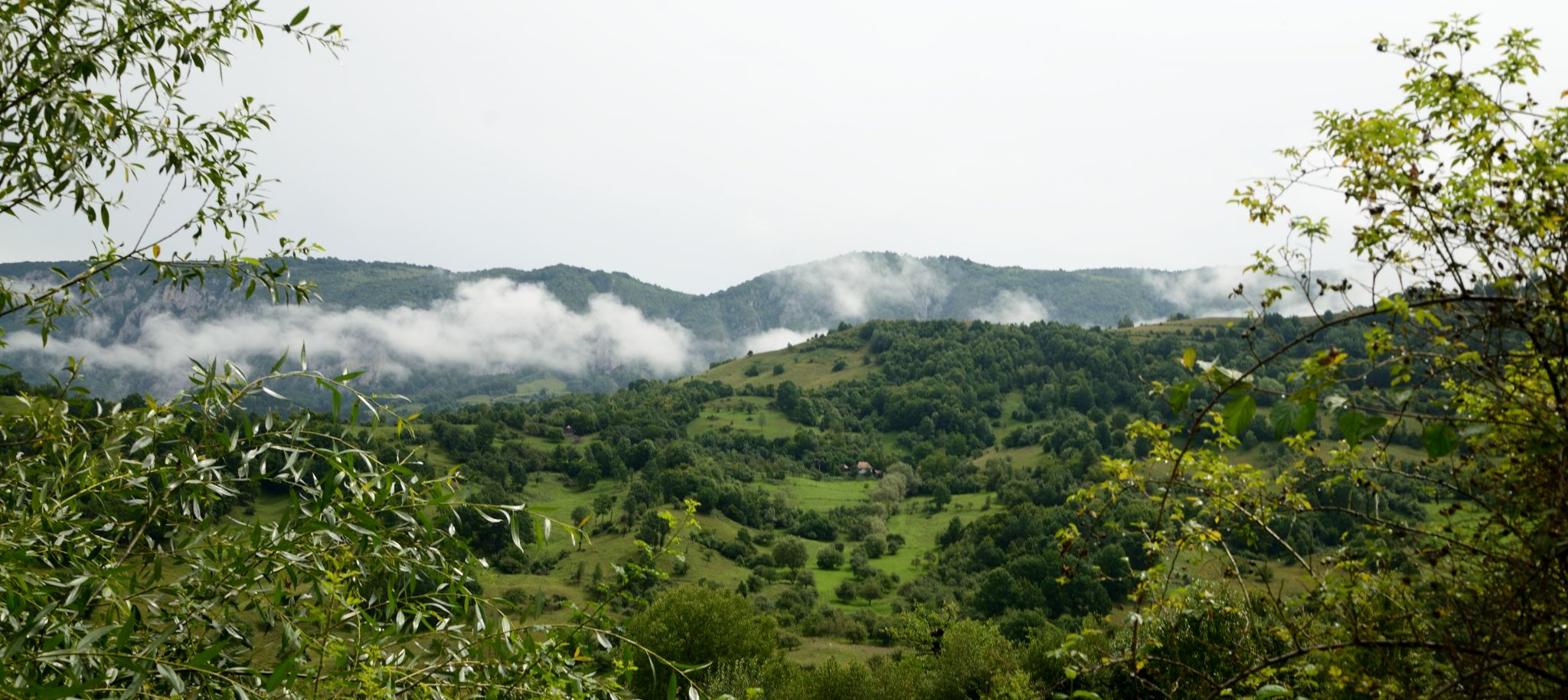 Dumesti, Romania