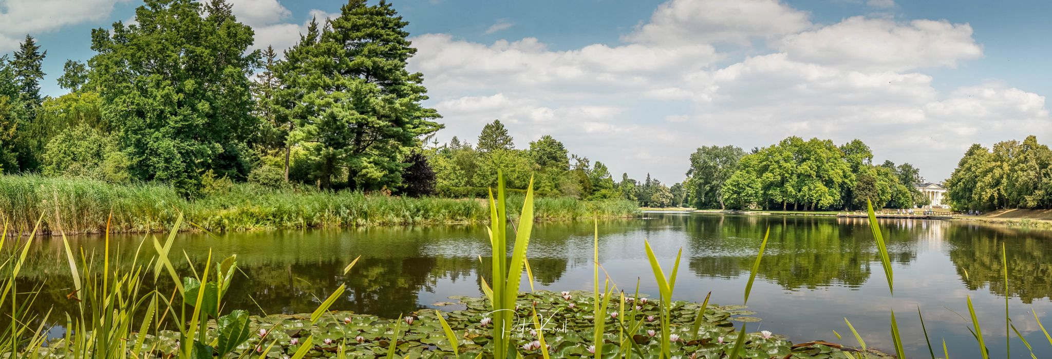 Landscaped gardens at Wörlitz Palace, Germany