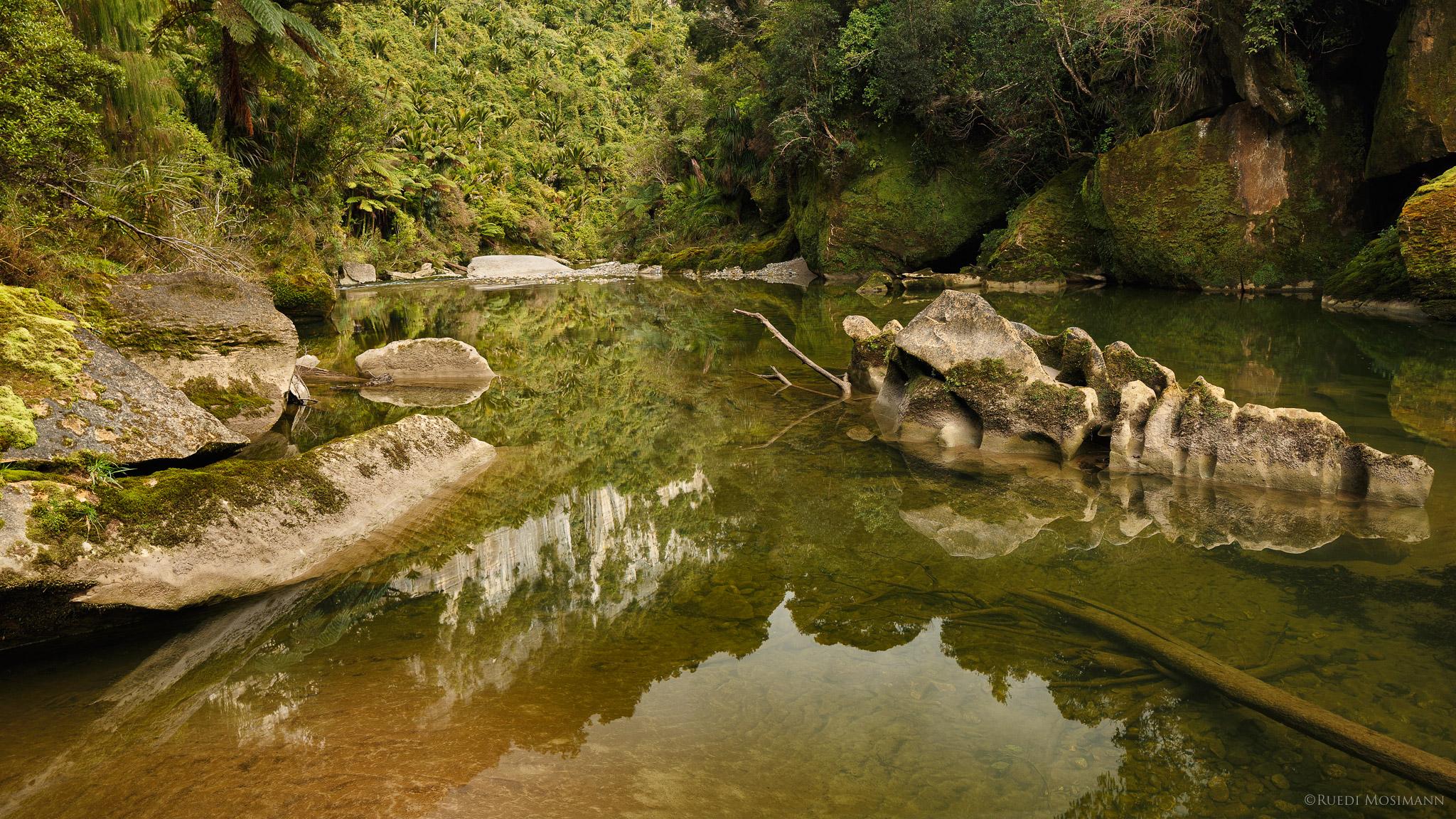 Pororari River Track, New Zealand