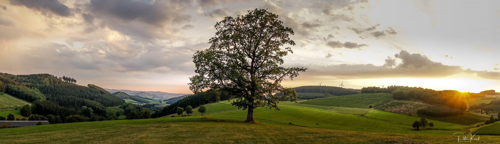 Sauerland Sunset, Germany