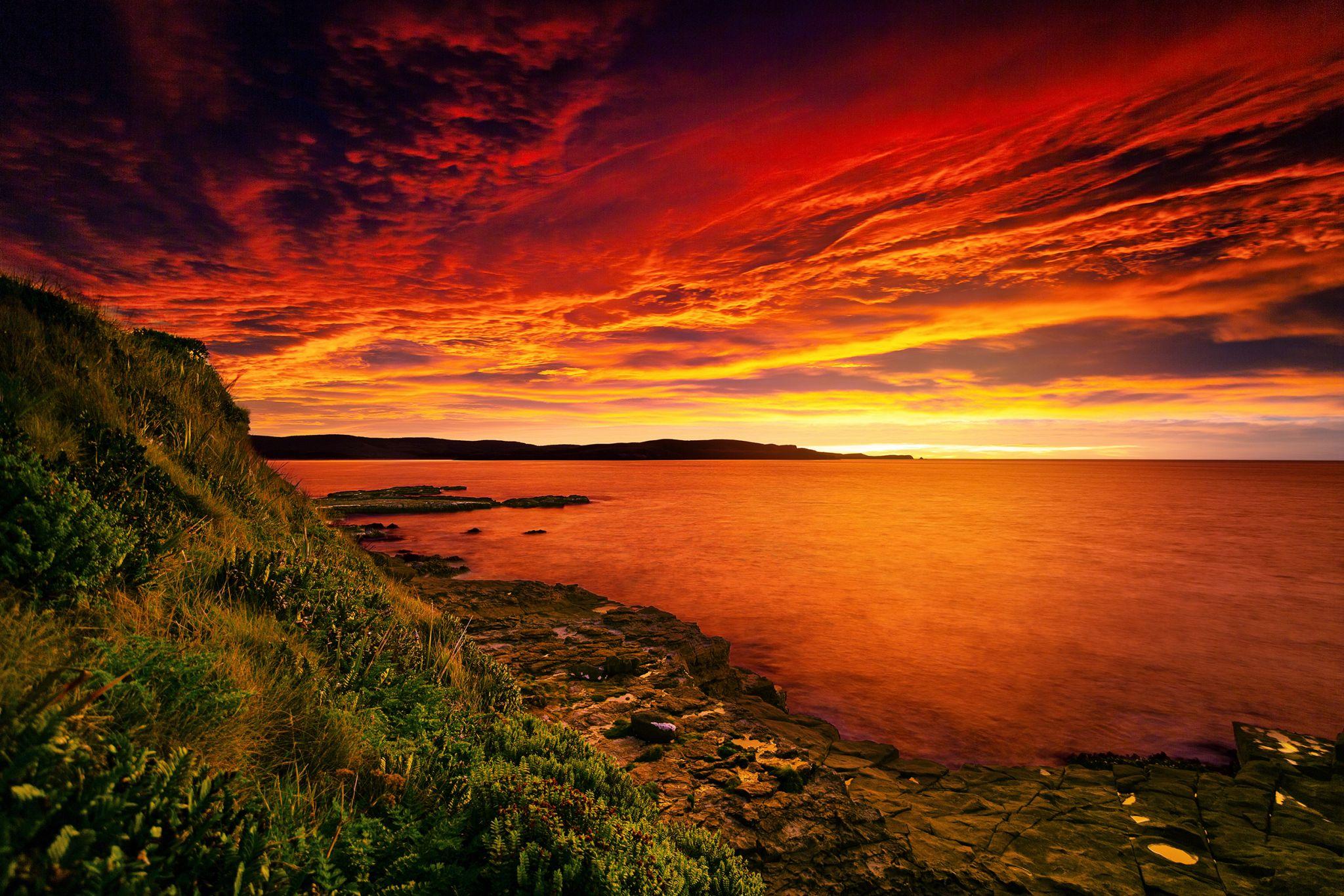 Curio Bay, New Zealand