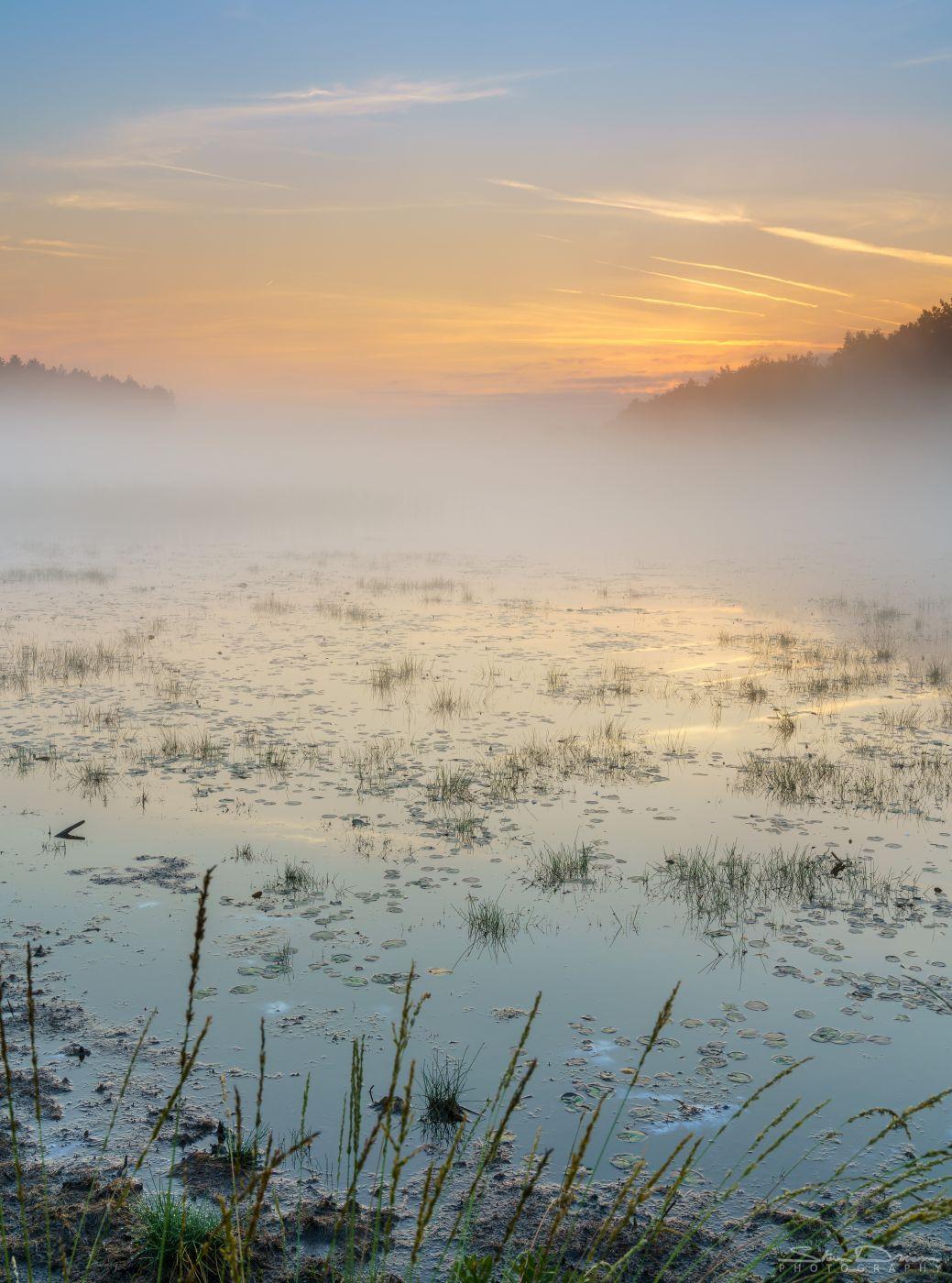 De Teut Naturereserve, Belgium
