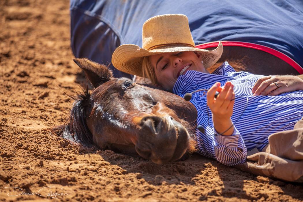 Snoring horse Katherine Outback Experience NT, Australia