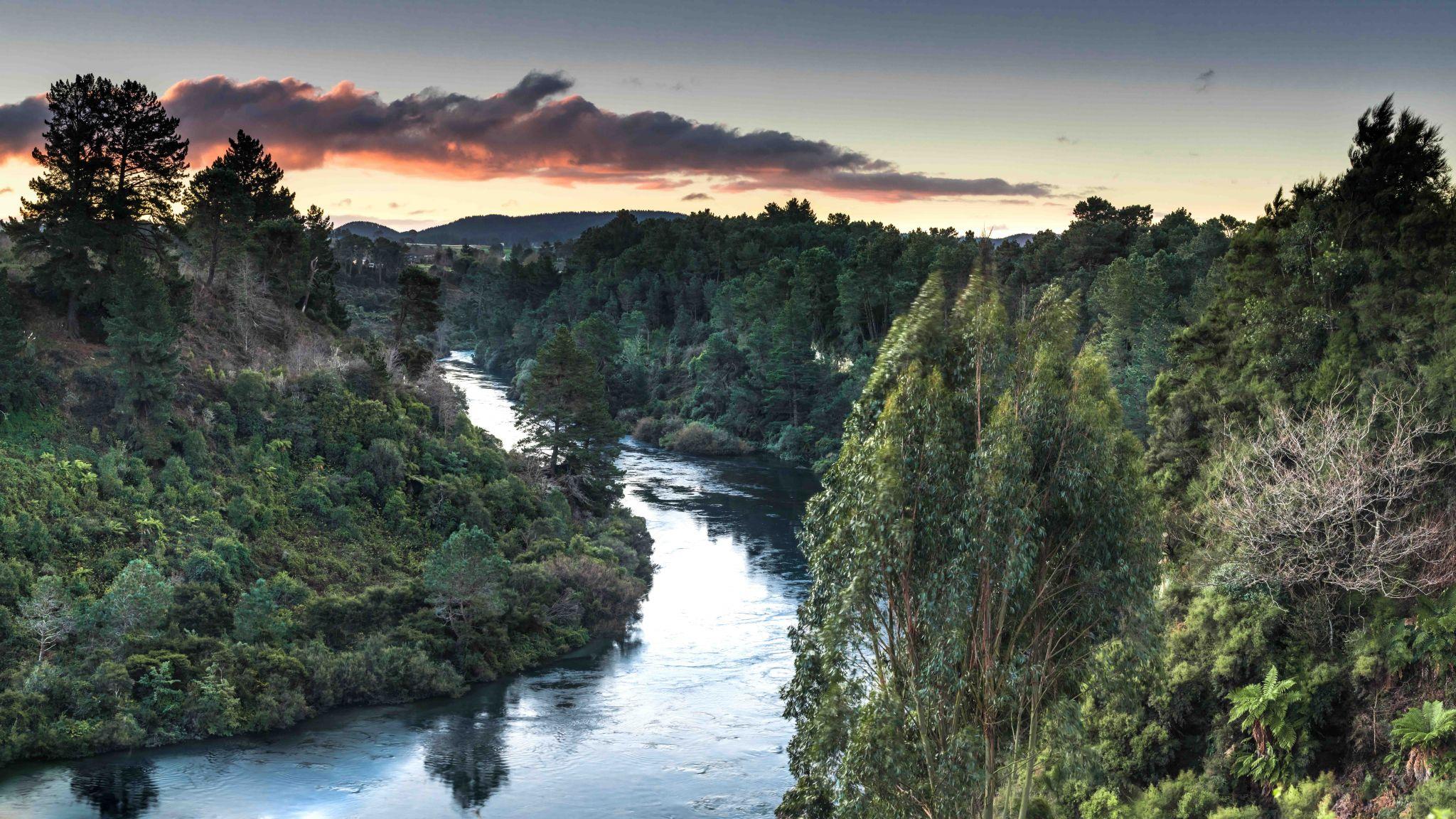 Waikato River Bend, New Zealand