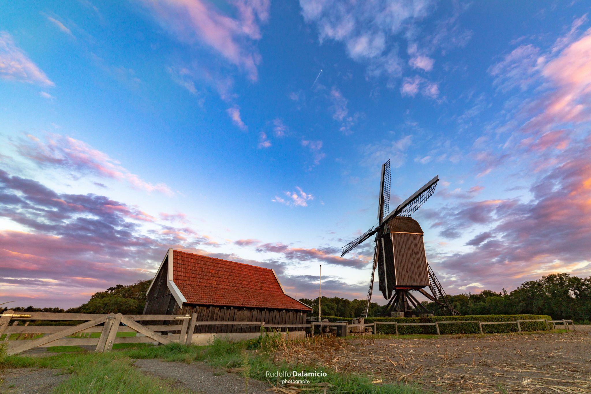 Flower Mill, Netherlands