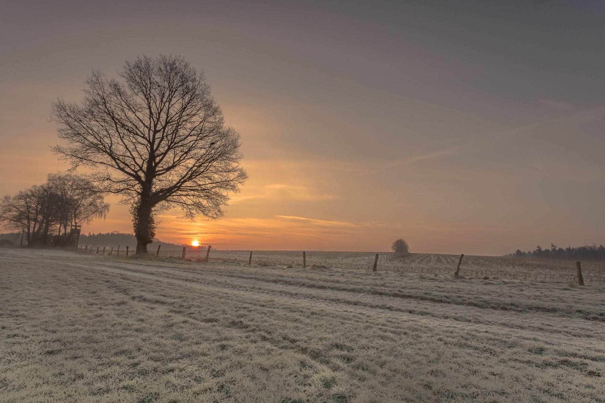 Landscape, Lower Saxony Germany, Germany