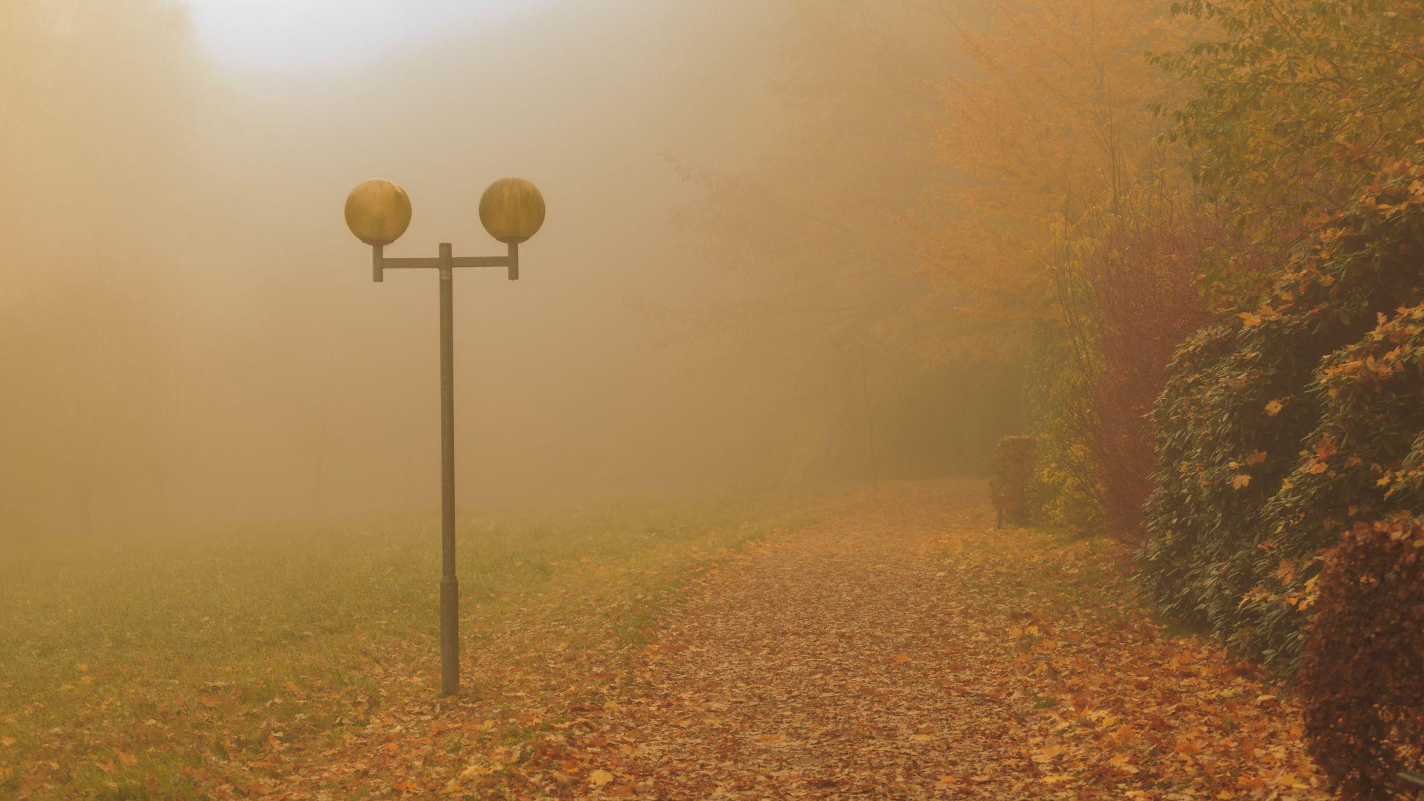 Bad Fallingbostel, Kur Park, Germany