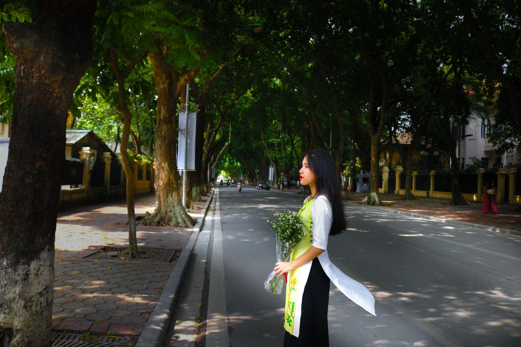 Phan Dinh Phung Street, Vietnam