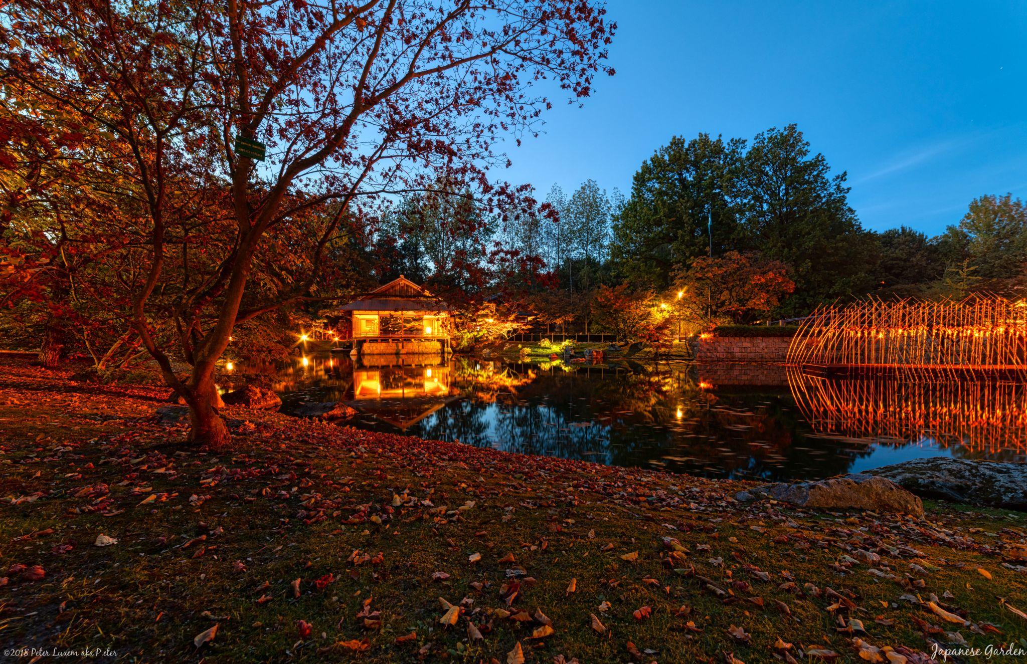 Japenese Garden/Japanse Tuin, Belgium