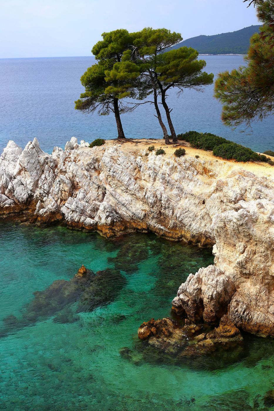 Three Pine Tree's, Greece