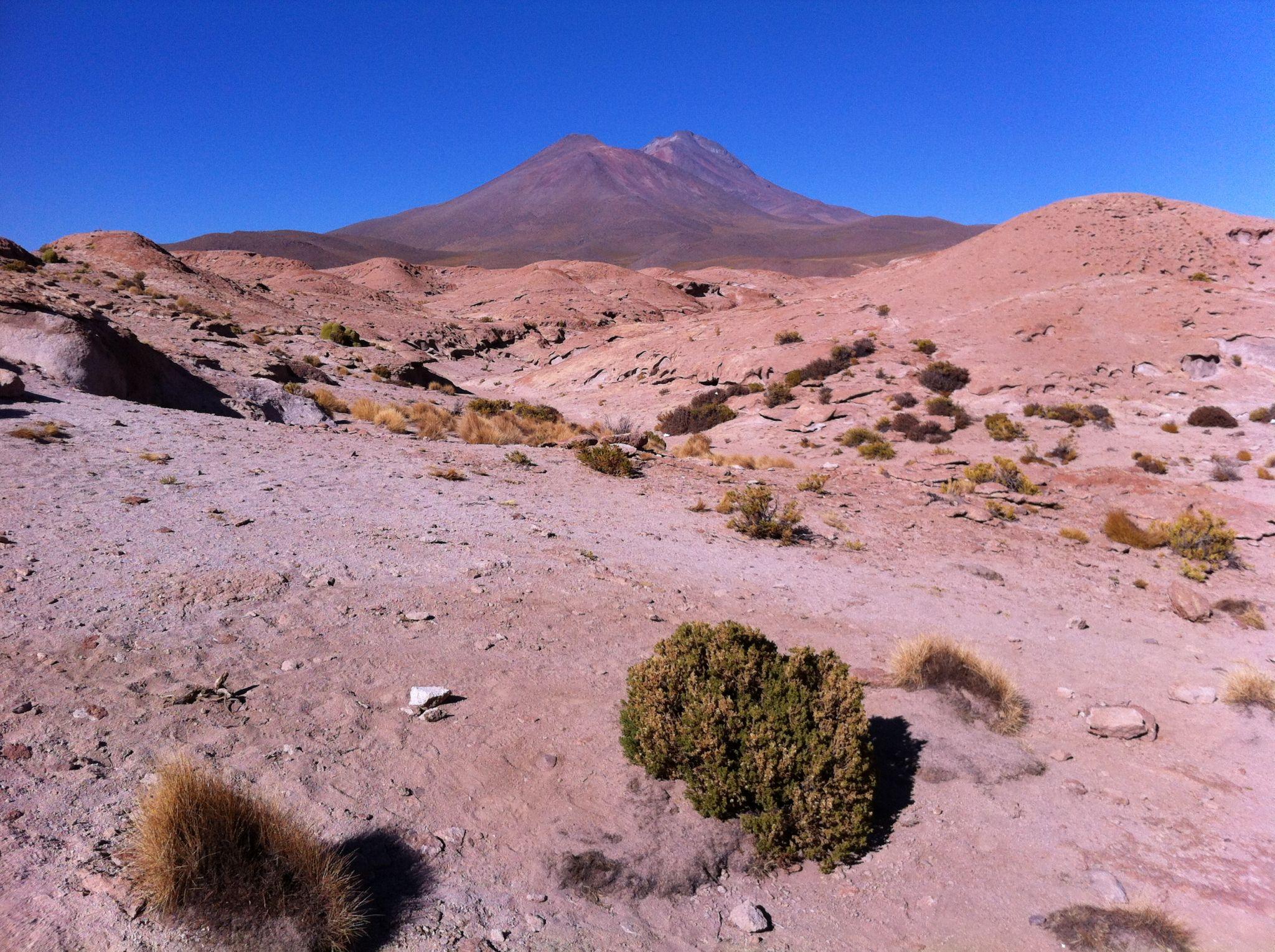 Volcán Ollague, Chile