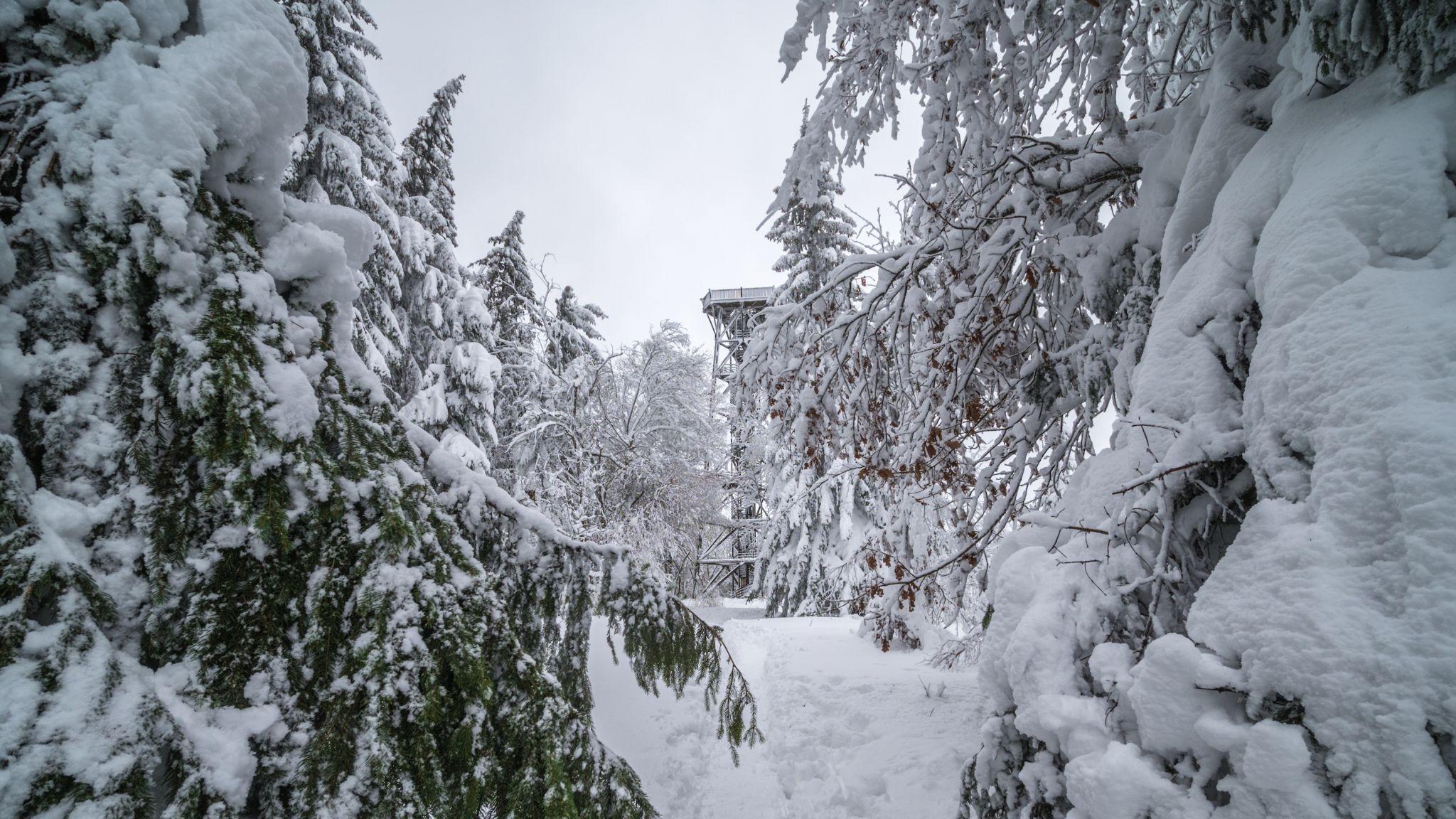 Dambergwarte, Austria