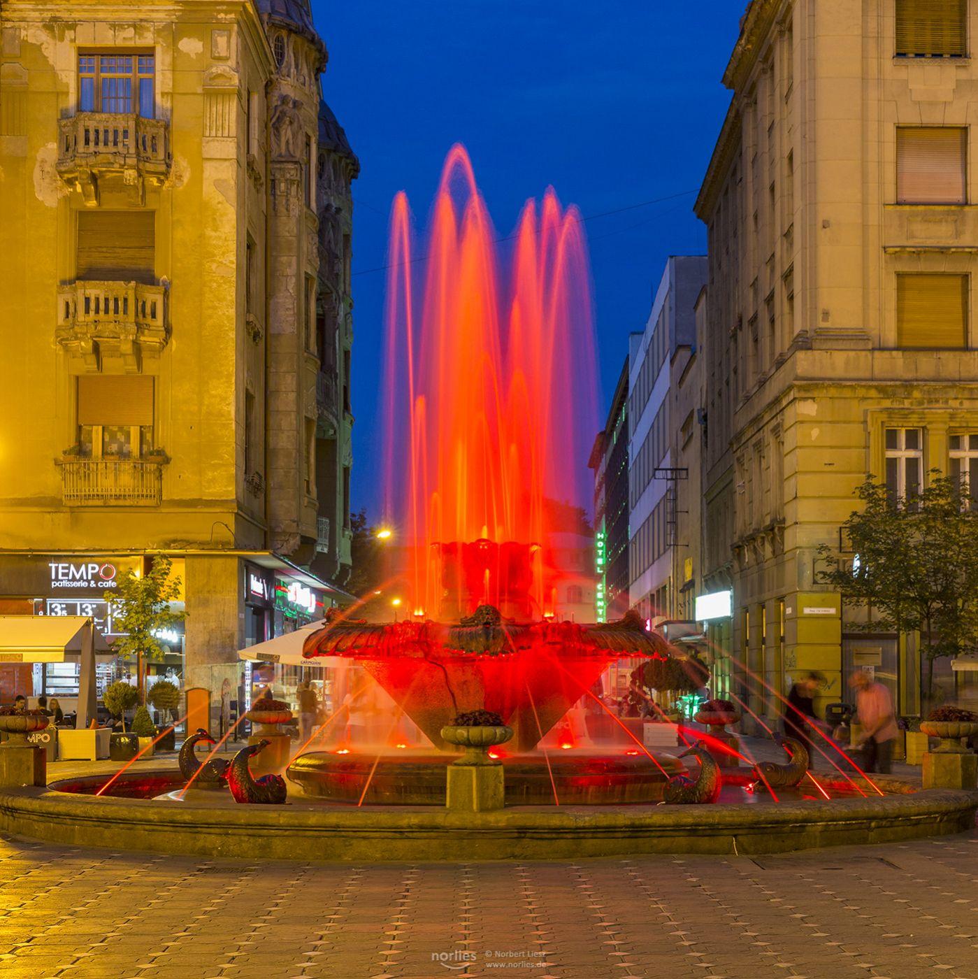 Fountain with Fish, Romania