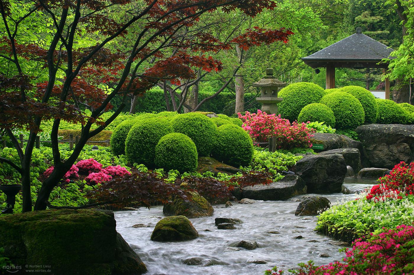 Japanese garden, Germany