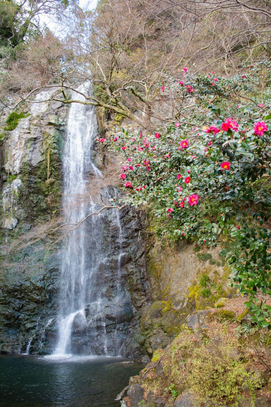 Mino Falls, Japan