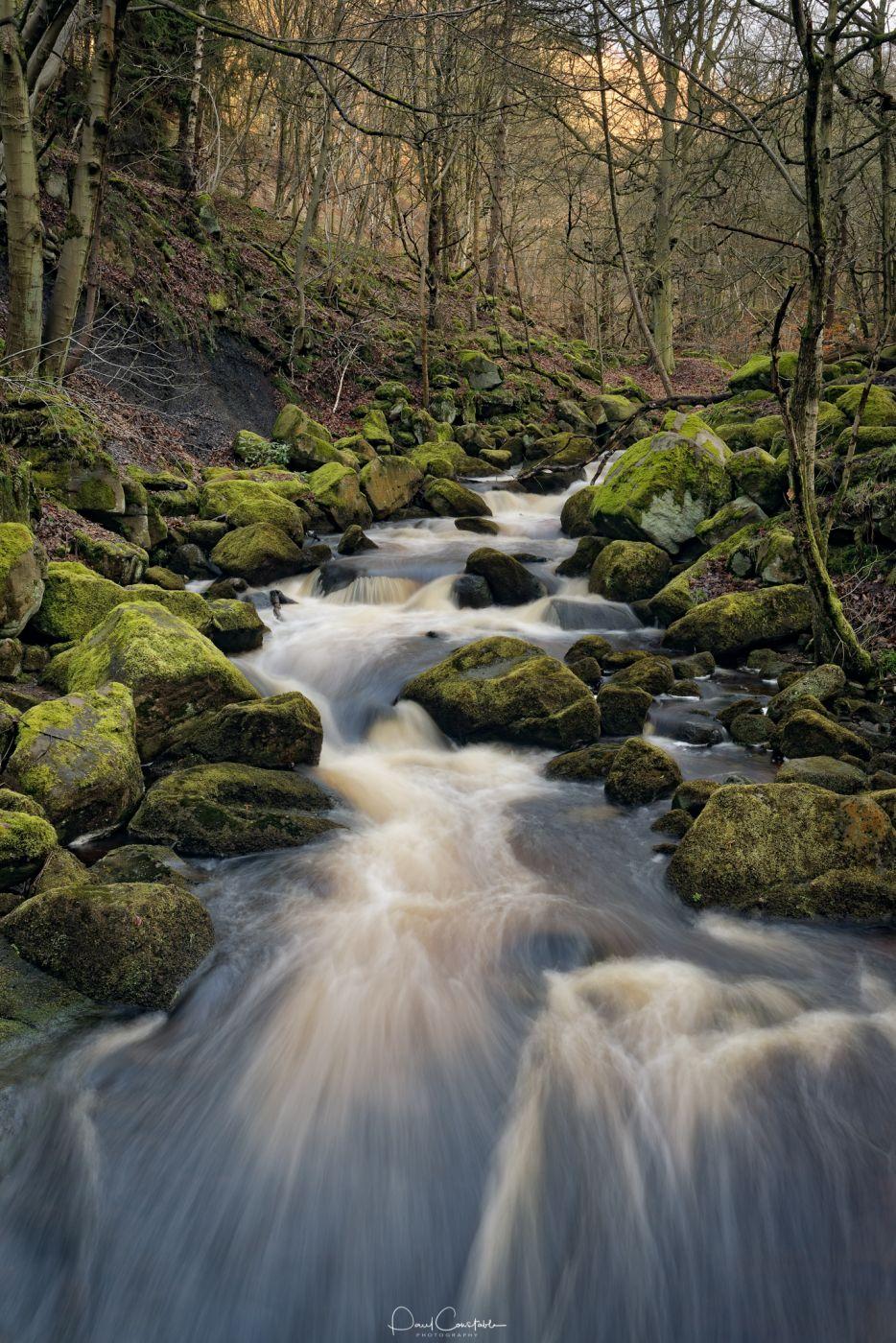 Padley Gorge, United Kingdom