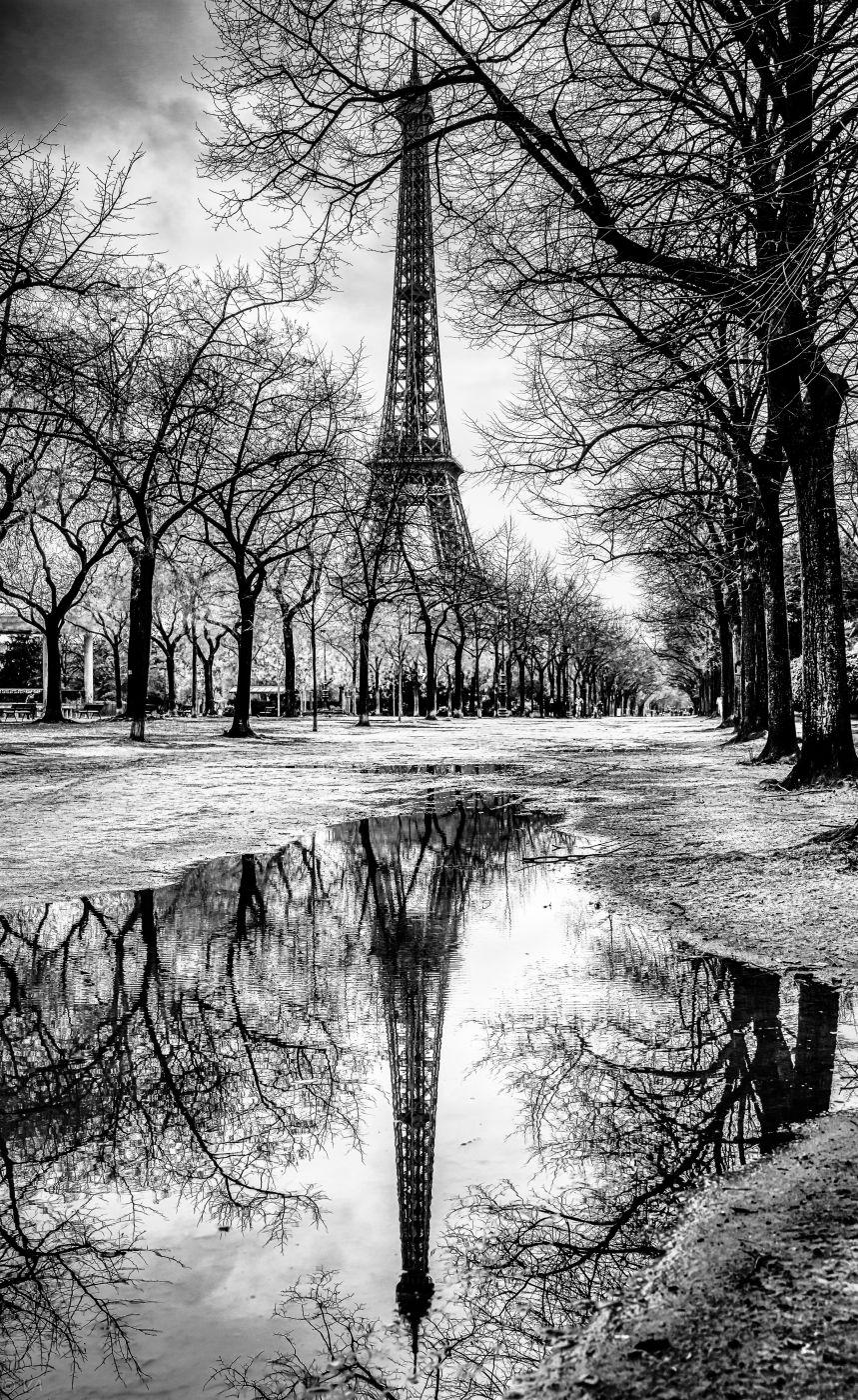Eiffel Tower puddle reflection, France
