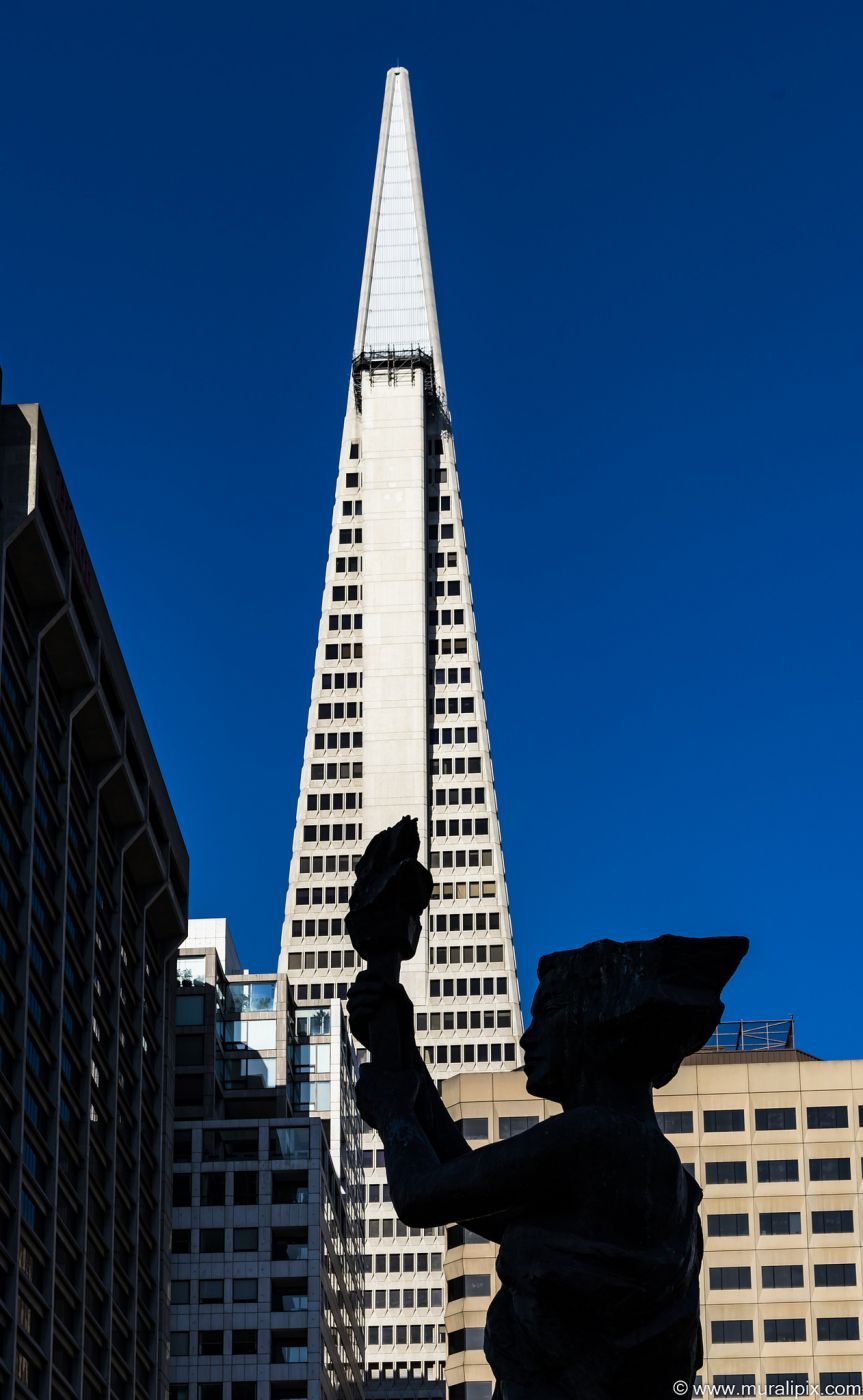 View of Transamerica Pyramid from Portsmouth Square, USA
