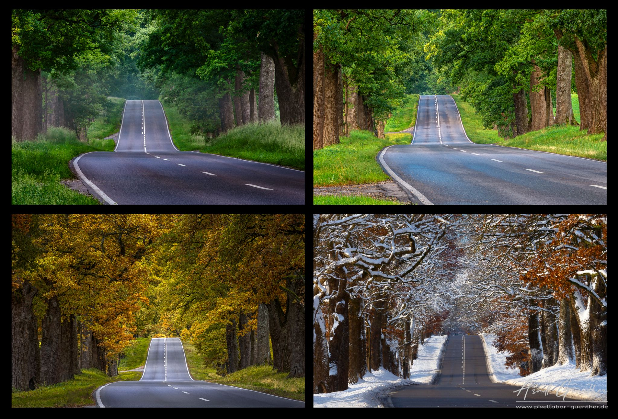 Four seasons in one picture, Germany