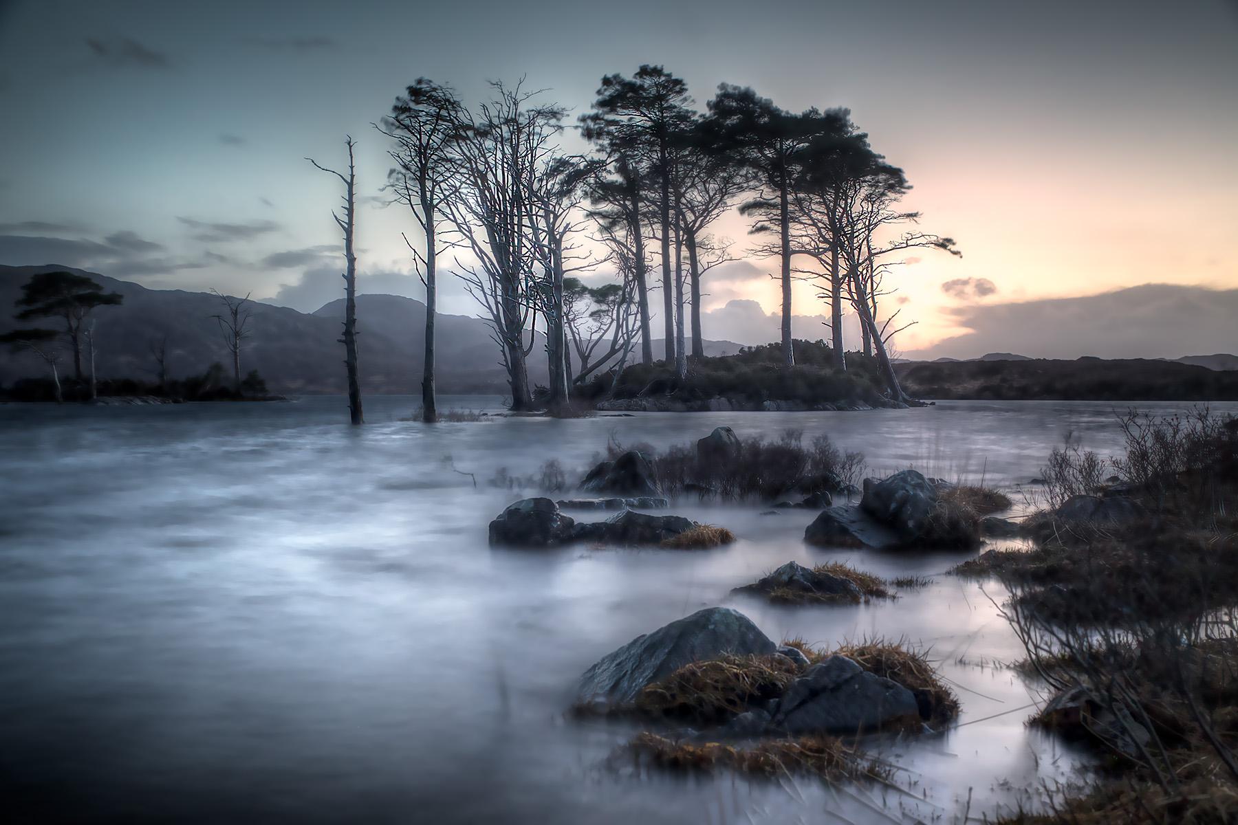 Loch Assynt Islands, United Kingdom