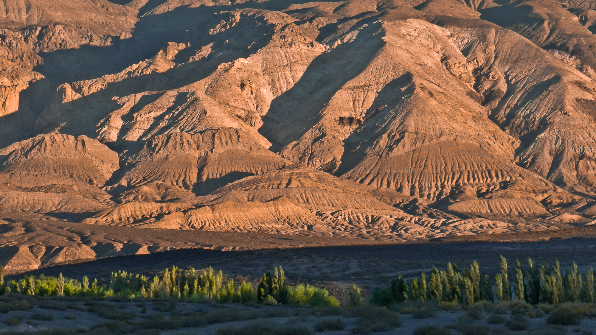 south Mendoza, Argentina