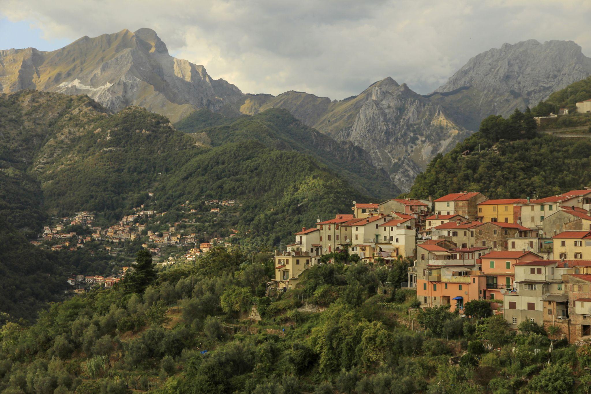 Vertical garden, Italy