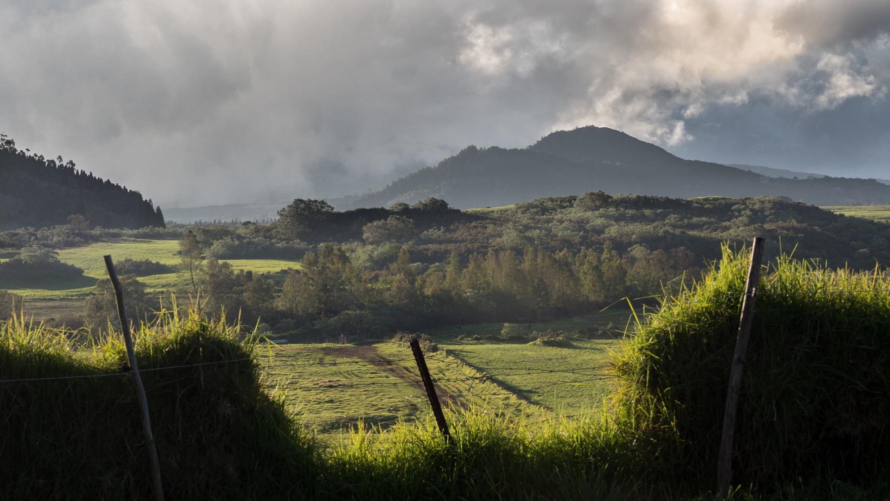 Chemin Mathias, Reunion