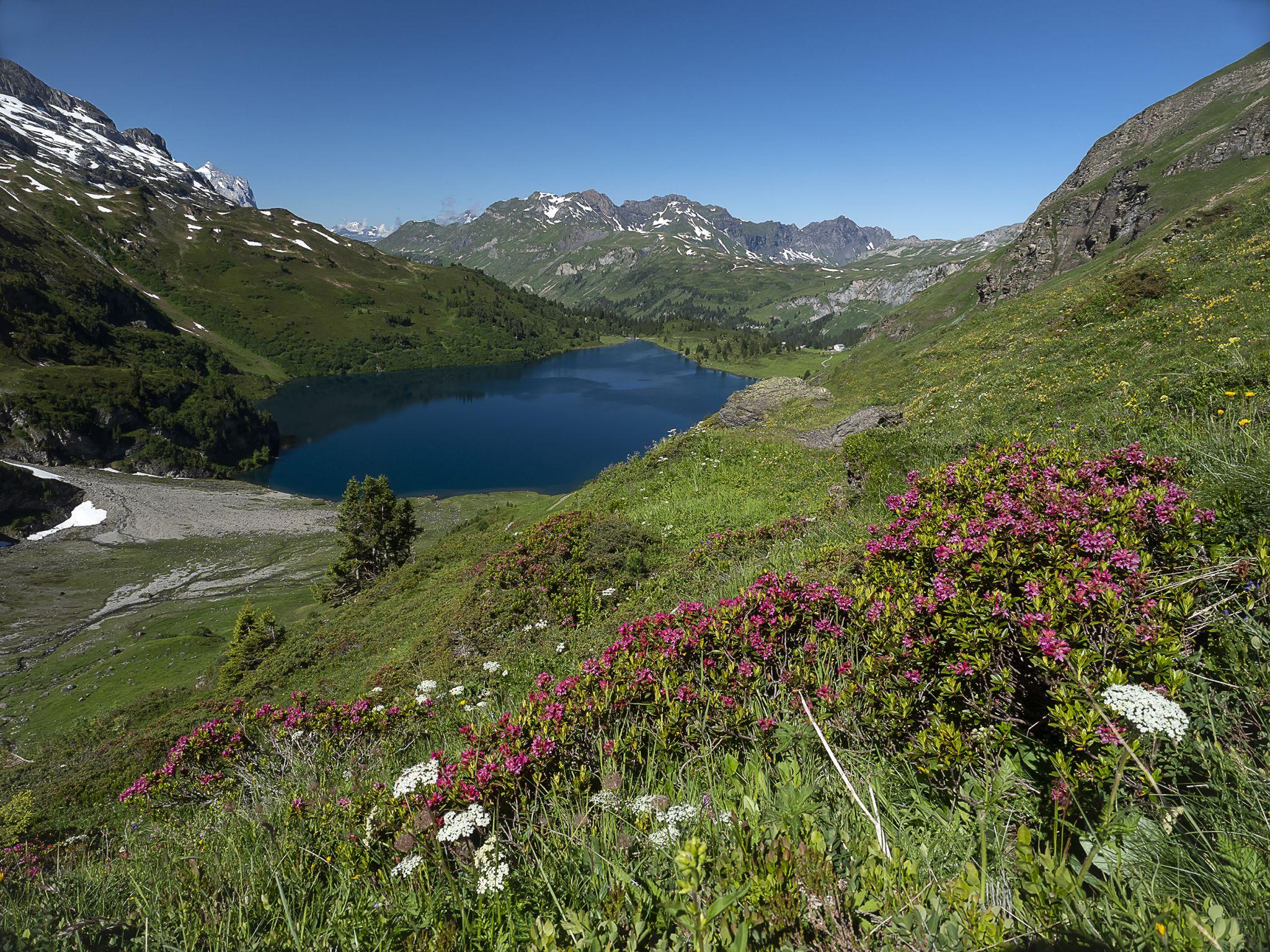 Engstlensee, Switzerland