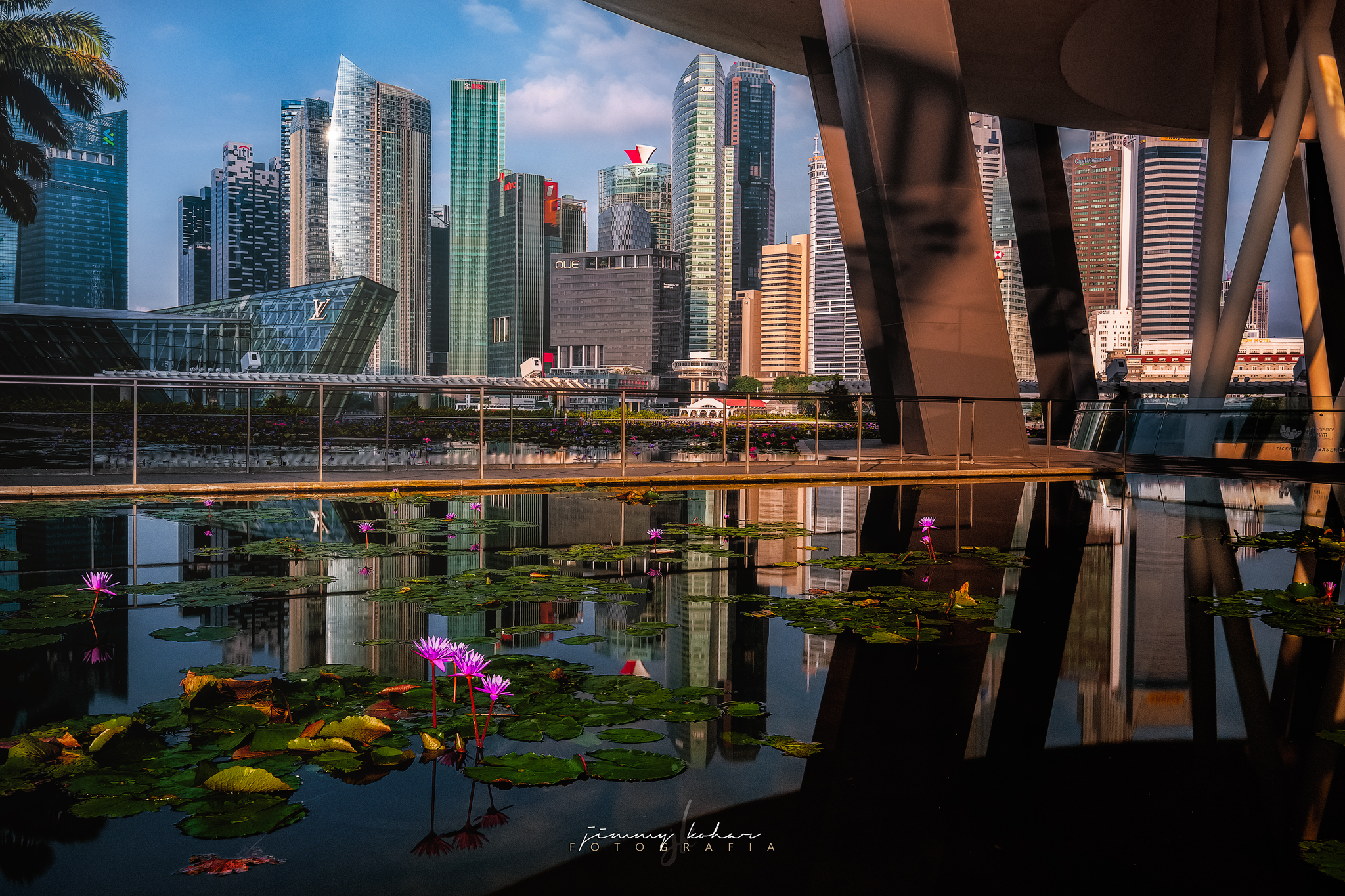 Lotus Pond of the ArtScience Museum Singapore, Singapore