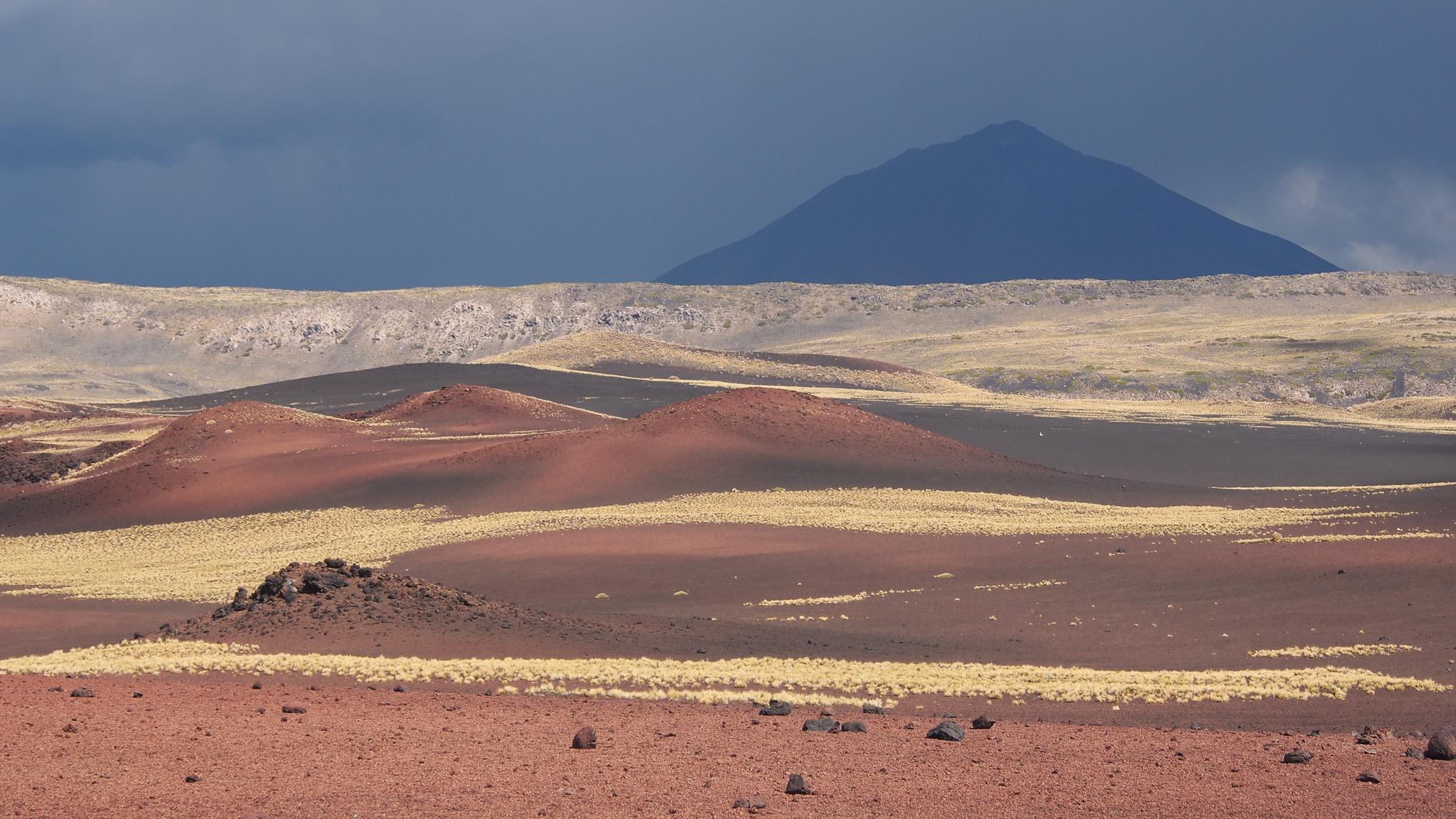 payunia colours, Argentina