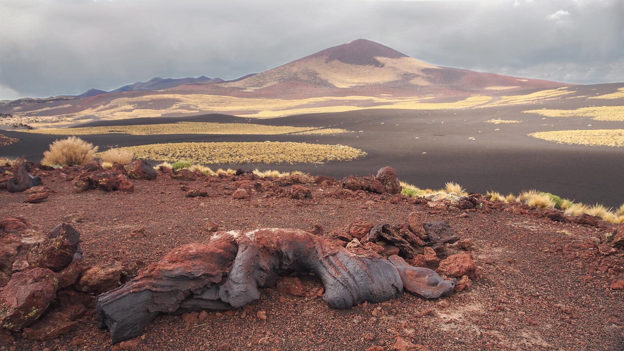 payunia lava fields, Argentina