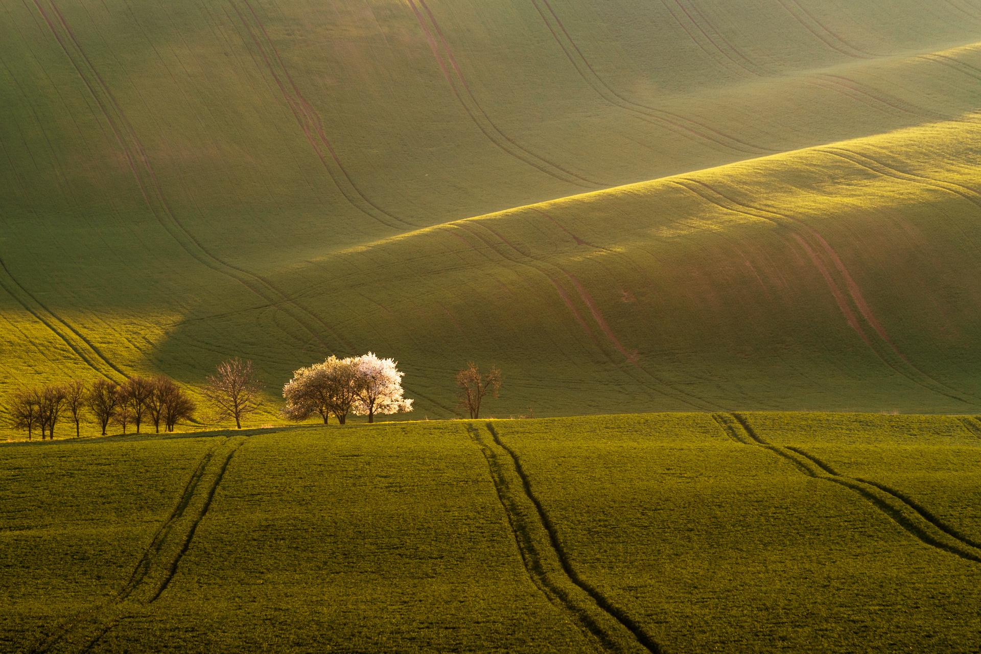 Rolling hills, Moravia, Czech Republic