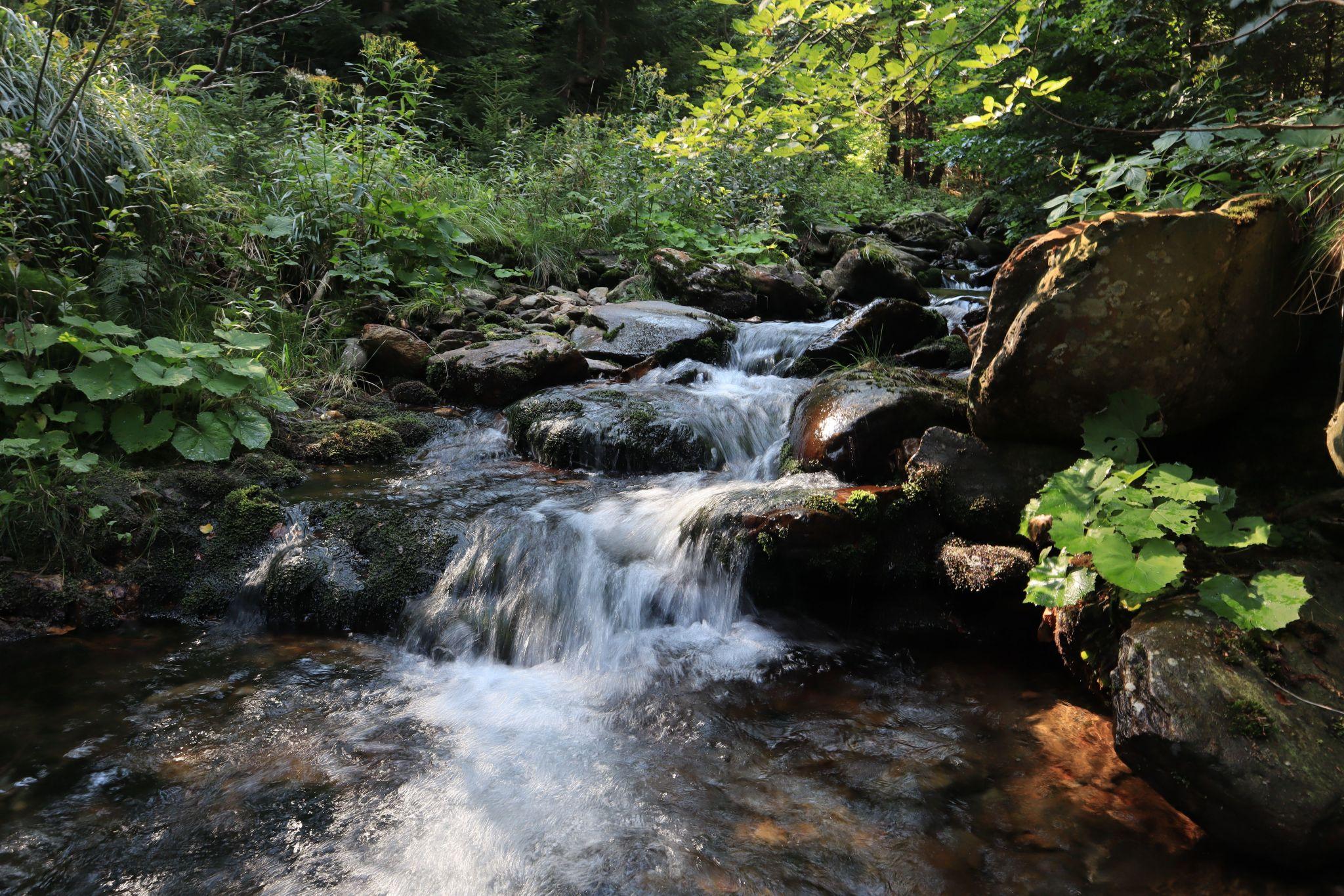 Water, Czech Republic