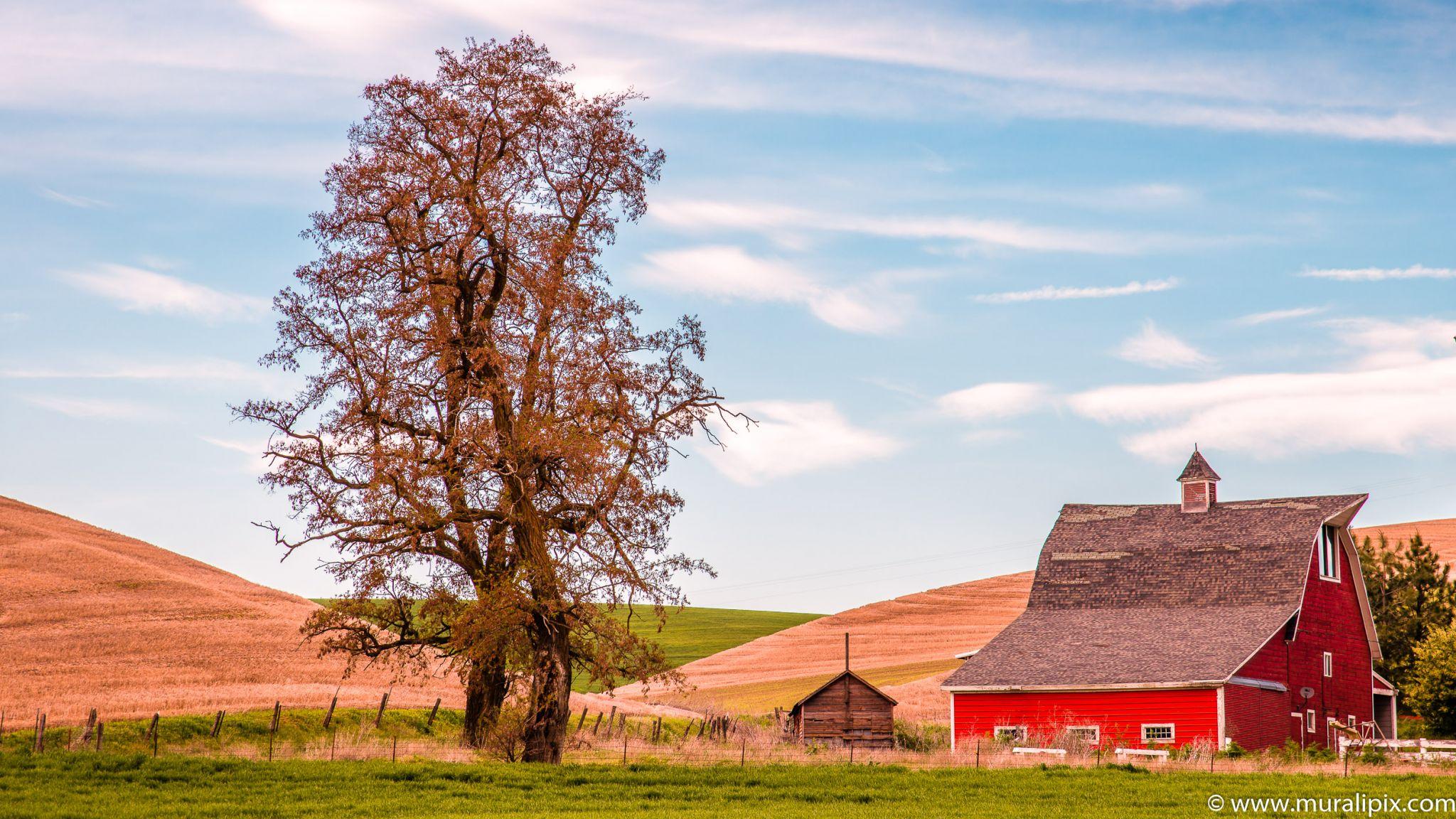 Colfax Red Farmhouse, USA