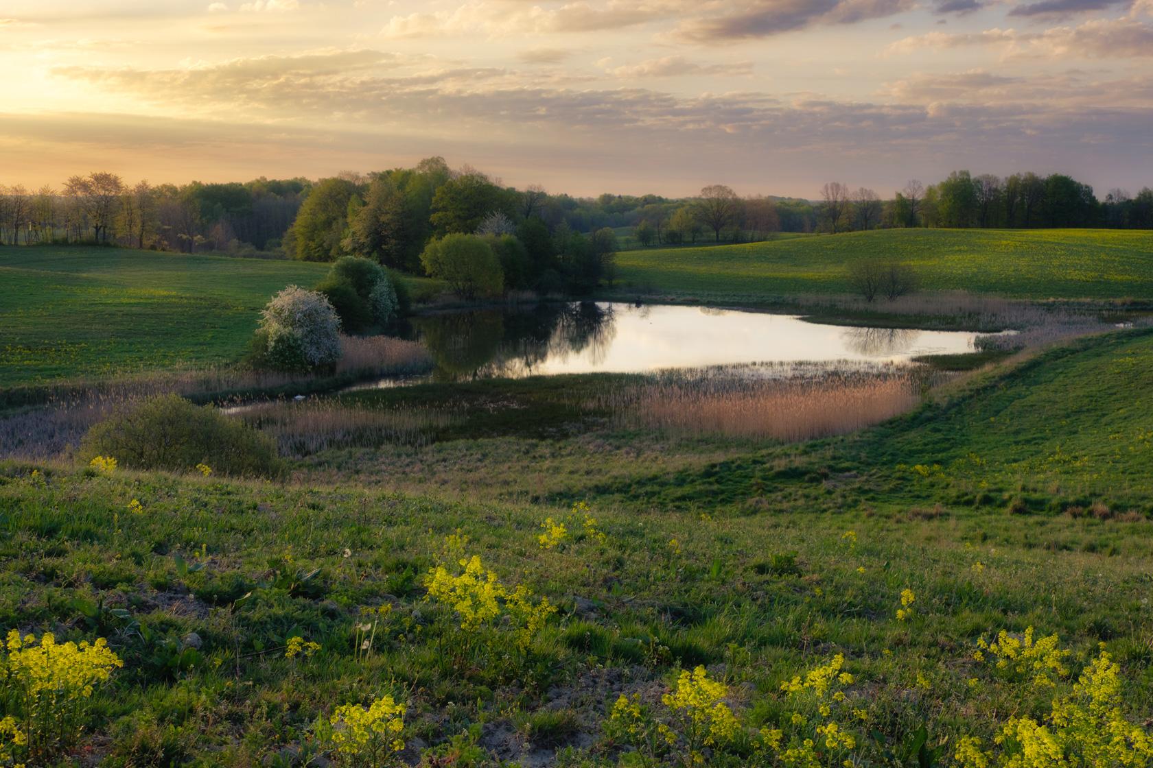 Drawsko Landscape Park, Poland