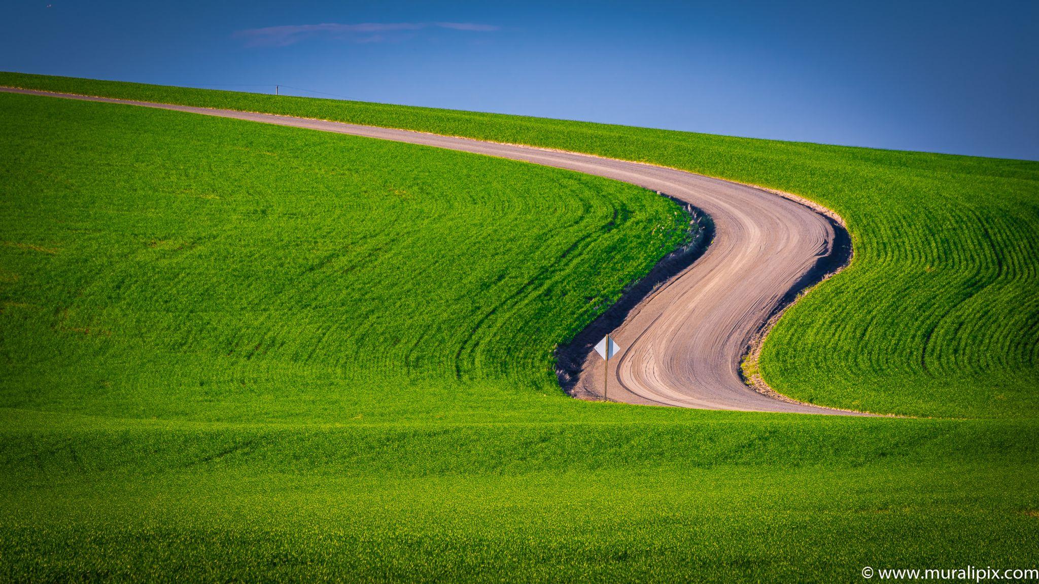 Endicott Farm Road, USA