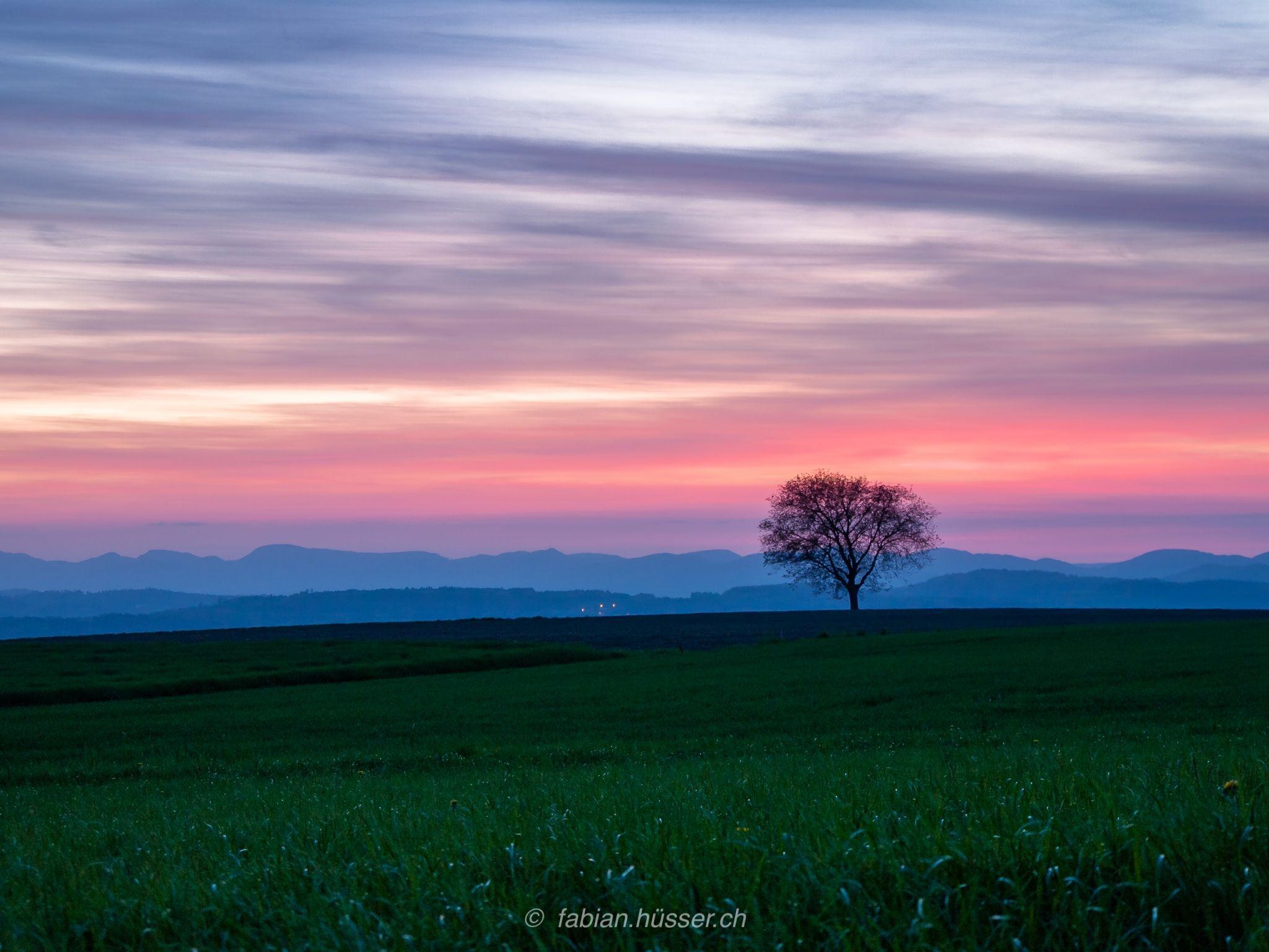 sunrise@spring, Switzerland