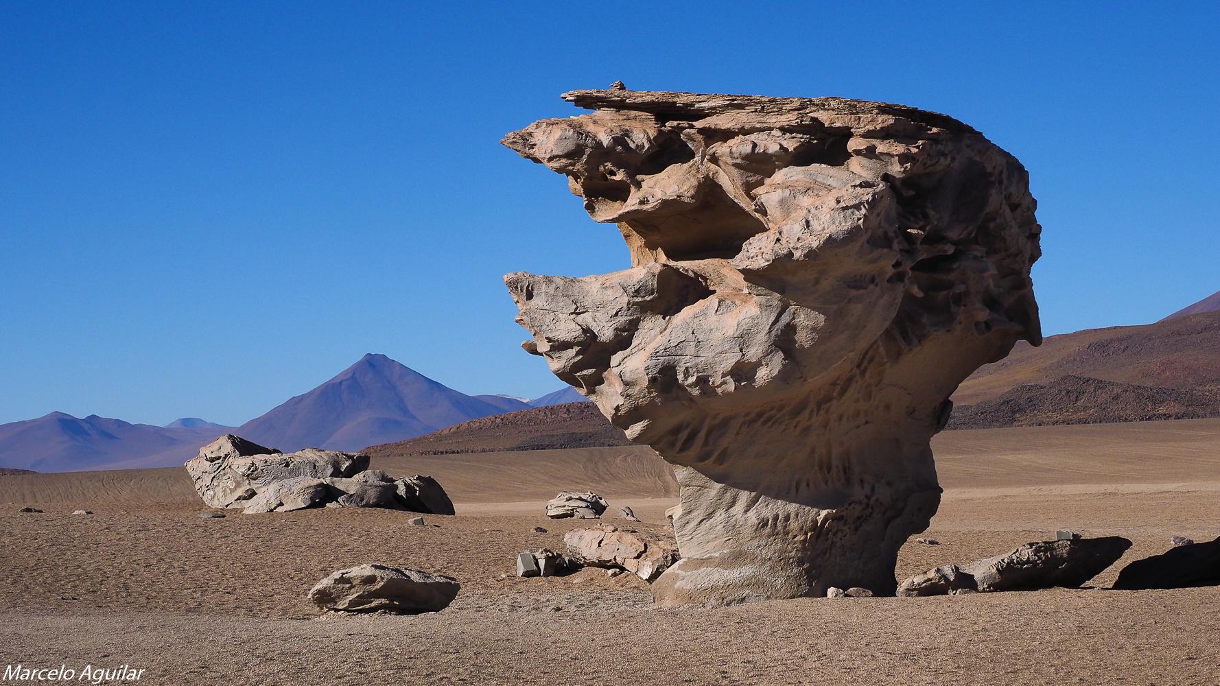 Arbol de Piedra (Rock tree), Bolivia